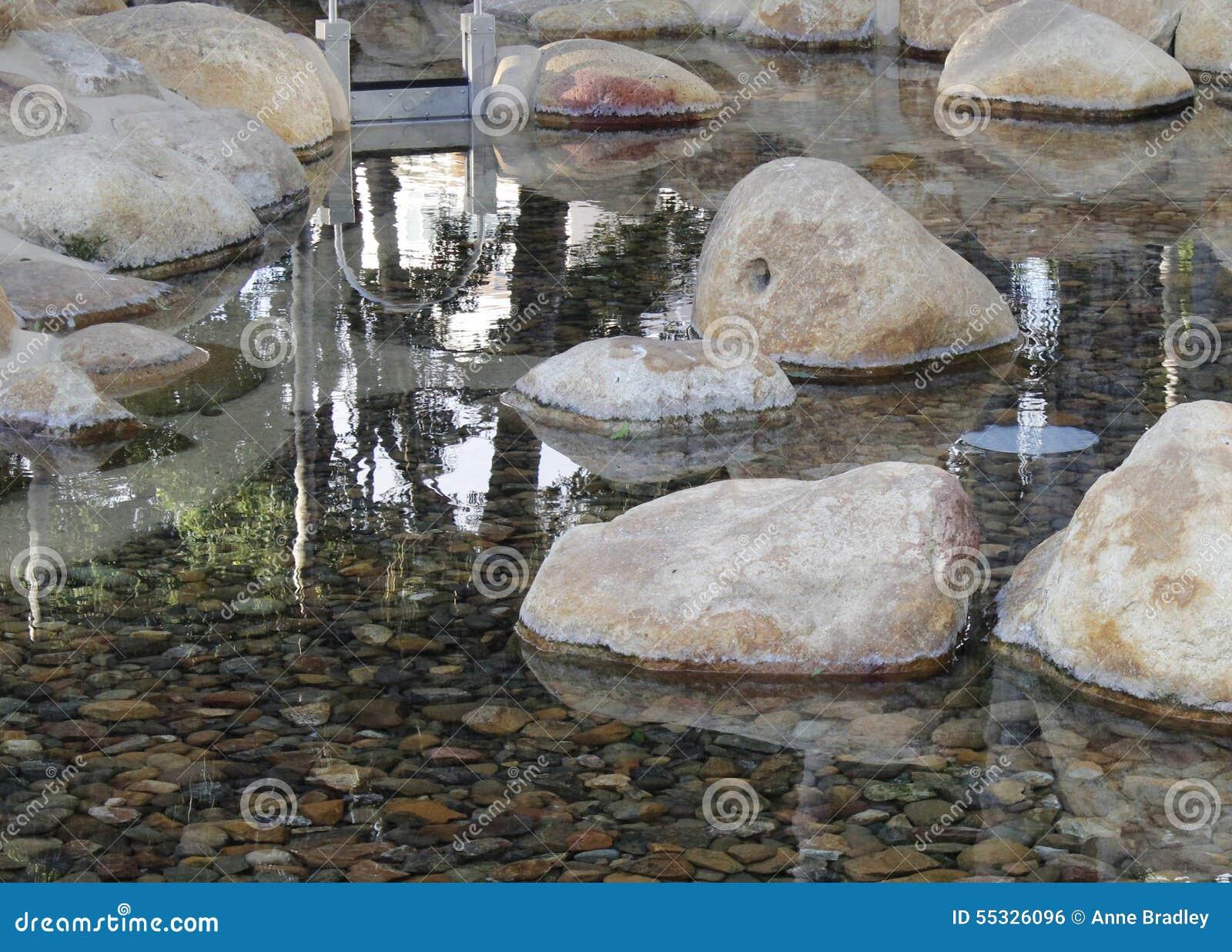Bezinningen in een rotspool