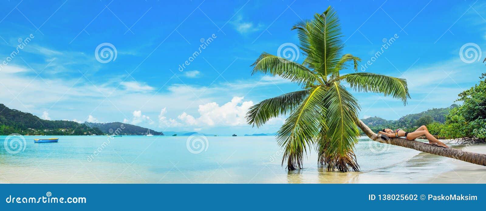 Bezpłatna kobieta Cieszy się oceanu popiół