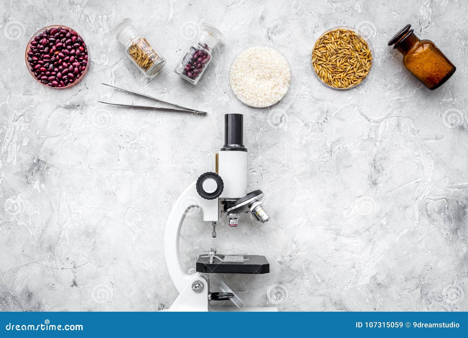Bezpieczeństwo żywnościowe Banatka, ryż i czerwone fasole blisko mikroskopu na popielatym tło odgórnego widoku copyspace,