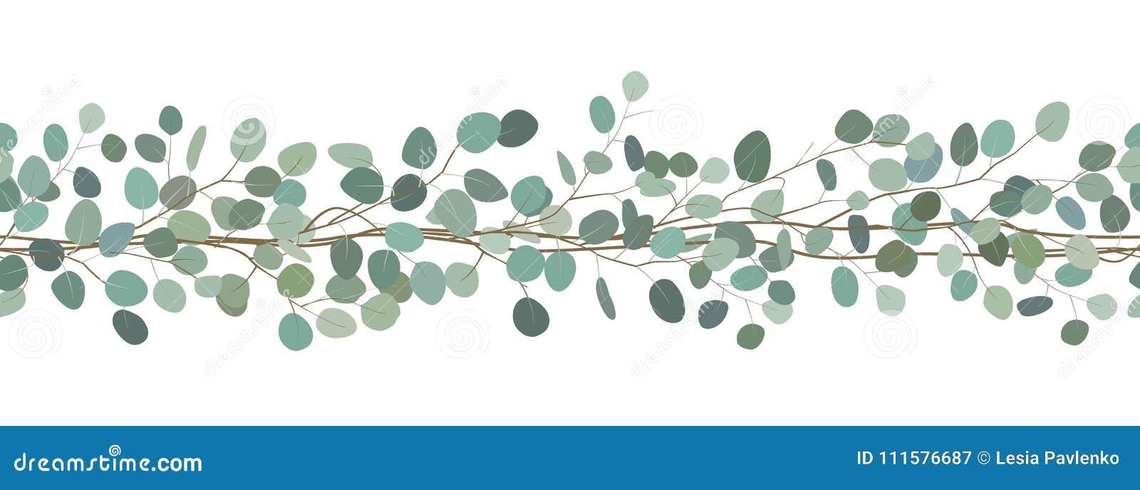 Bezszwowa granica eukaliptusowe gałąź rama kwiecista wrobić serii Wektorowa ręka rysująca ilustracja Biały tło