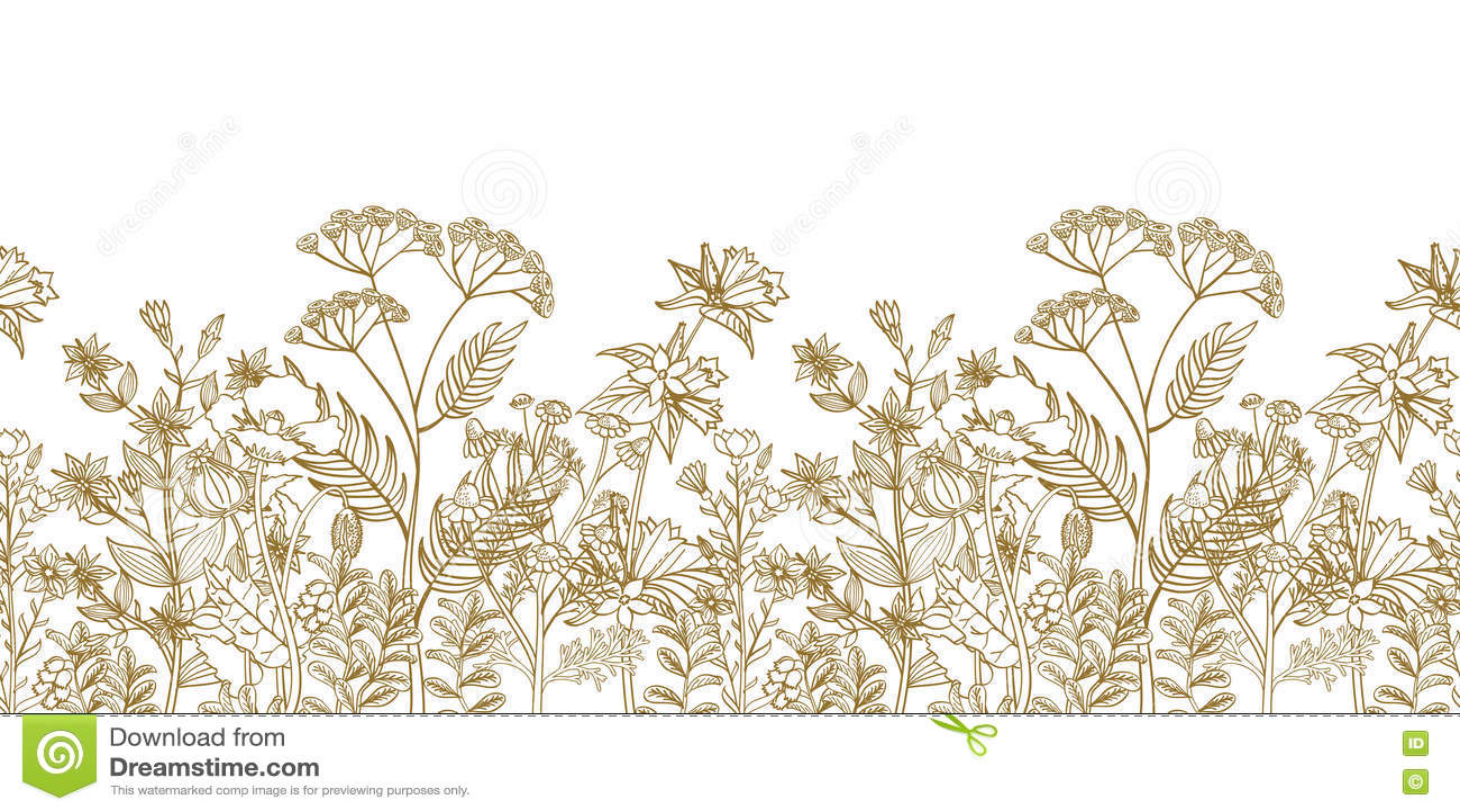 Bezszwowa wektorowa kwiecista granica z czarna biała ręka rysującymi dzikimi kwiatami i ziele