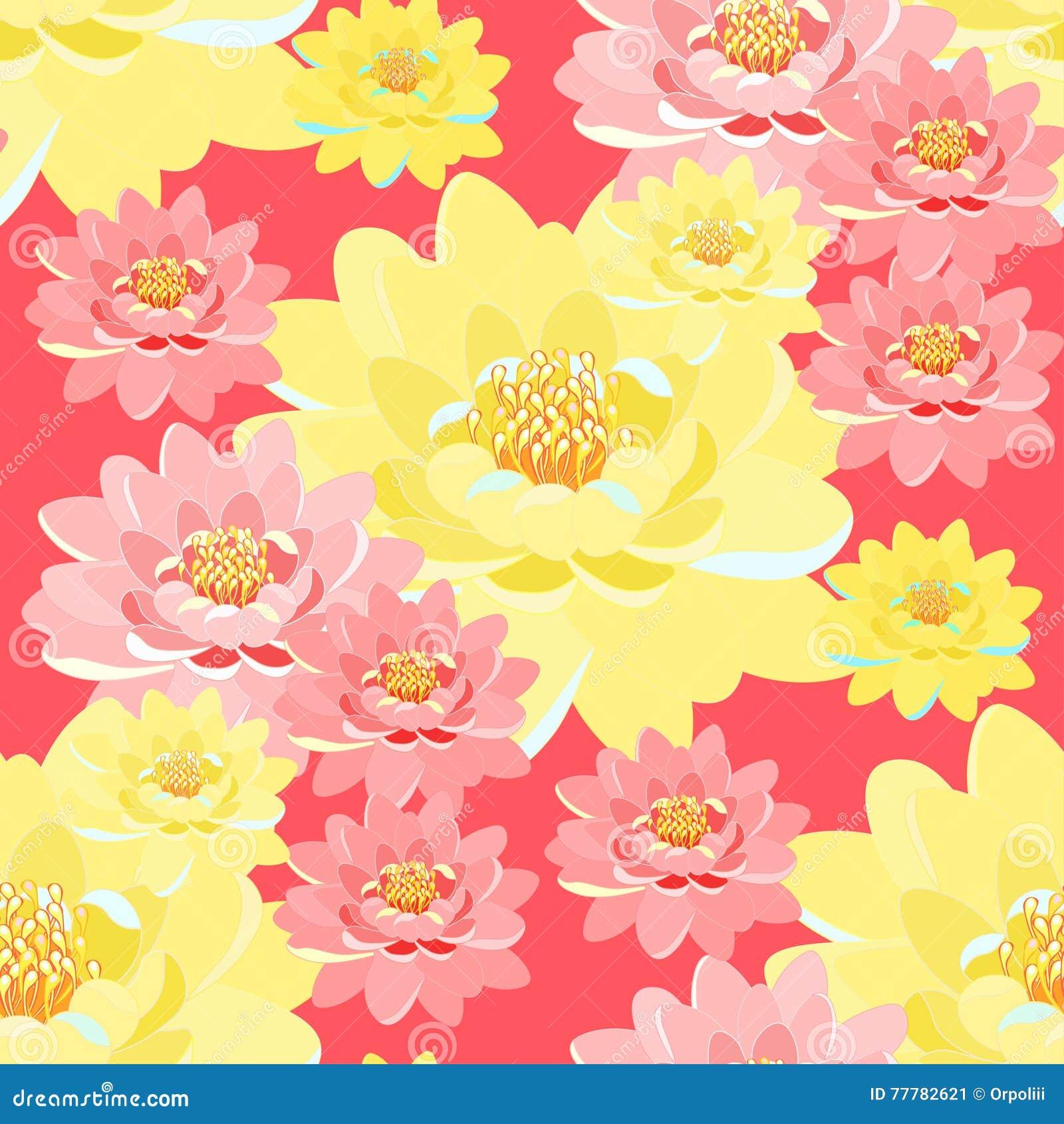 Bezszwowe deseniowe lotosowego kwiatu menchie, kolor żółty, zakończenie up na menchiach