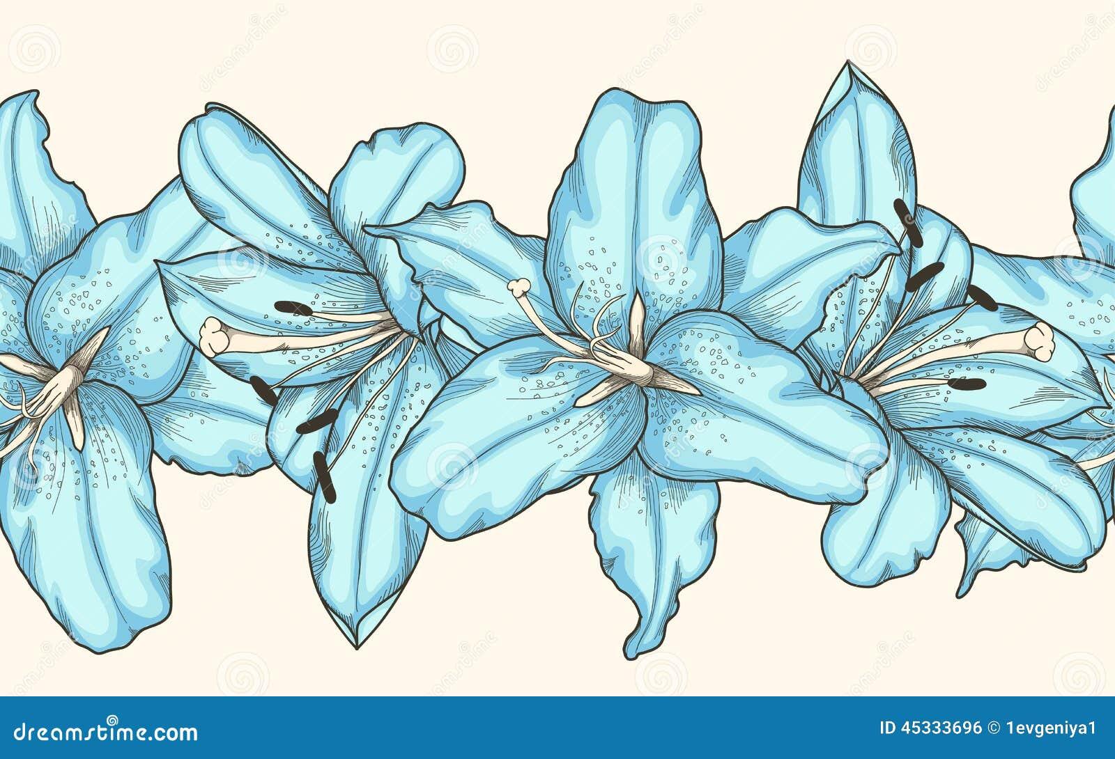 Bezszwowy horyzontalny ramowy element błękitne leluje kwitnie Pociągany ręcznie konturowe linie i uderzenia