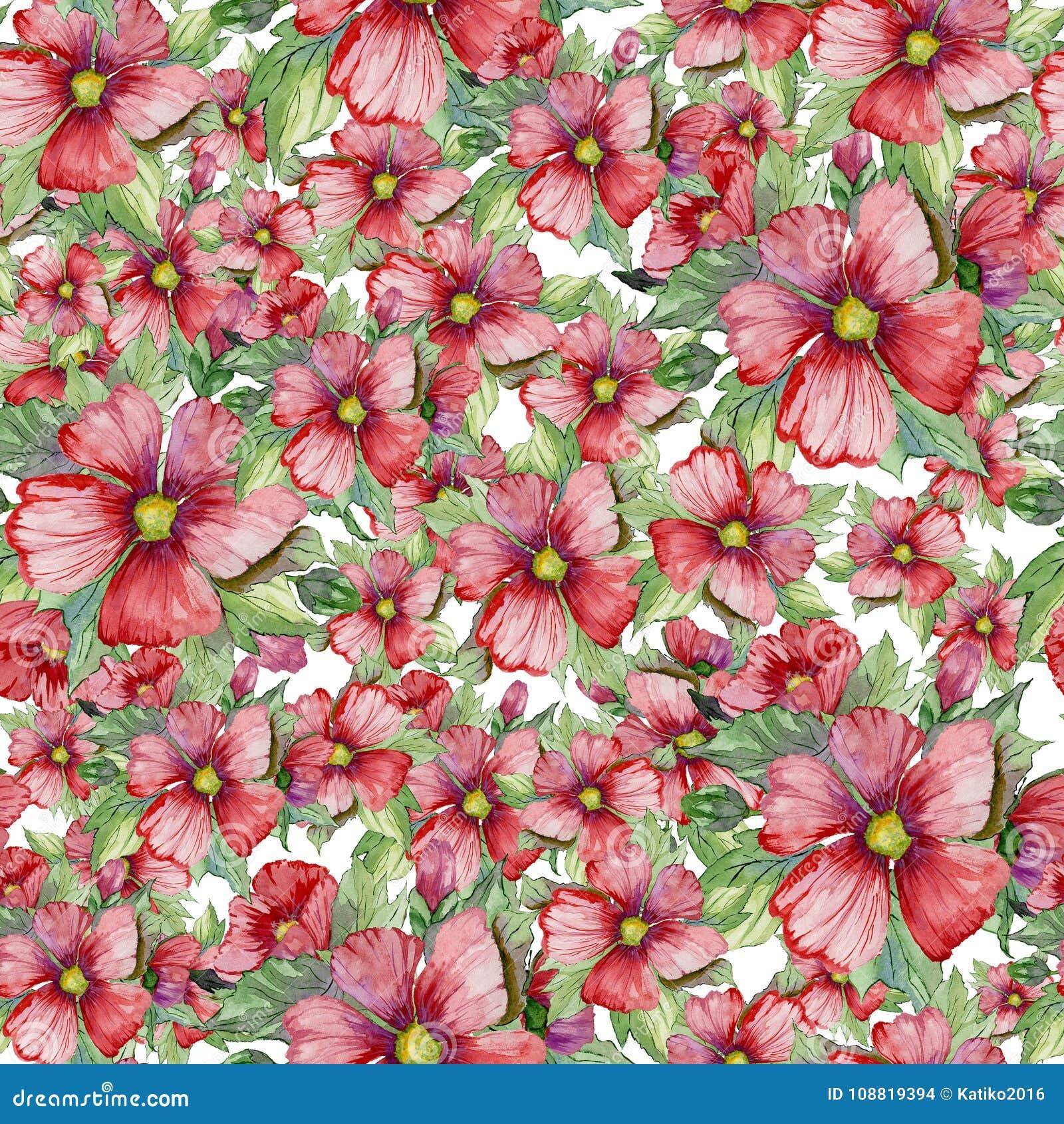 Bezszwowy kwiecisty wzór robić czerwony malva kwitnie na białym tle adobe korekcj wysokiego obrazu photoshop ilości obraz cyfrowy
