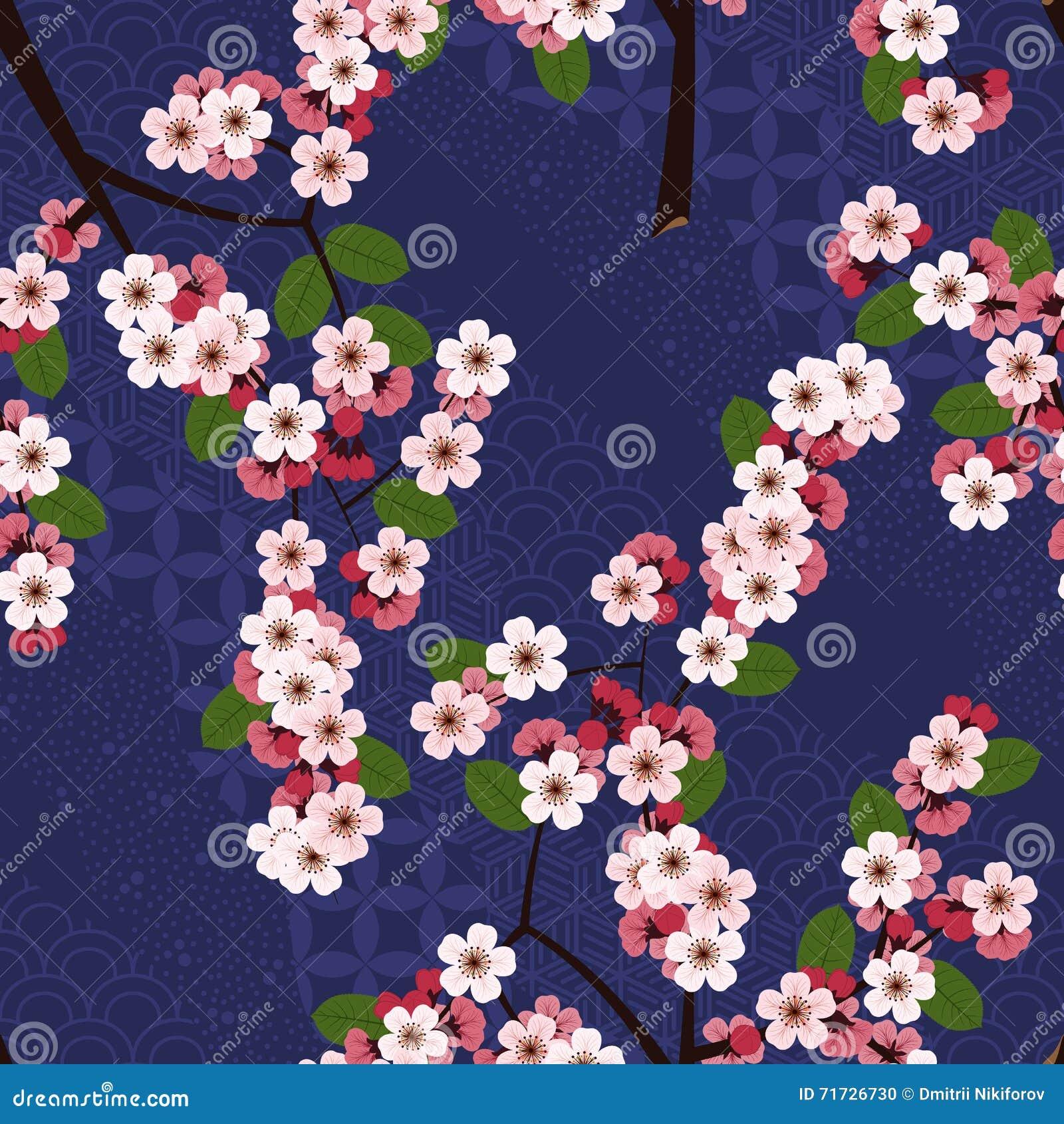 Bezszwowy kwiecisty wzór z czereśniowym Sakura kwitnie na błękitnym japońskim tle