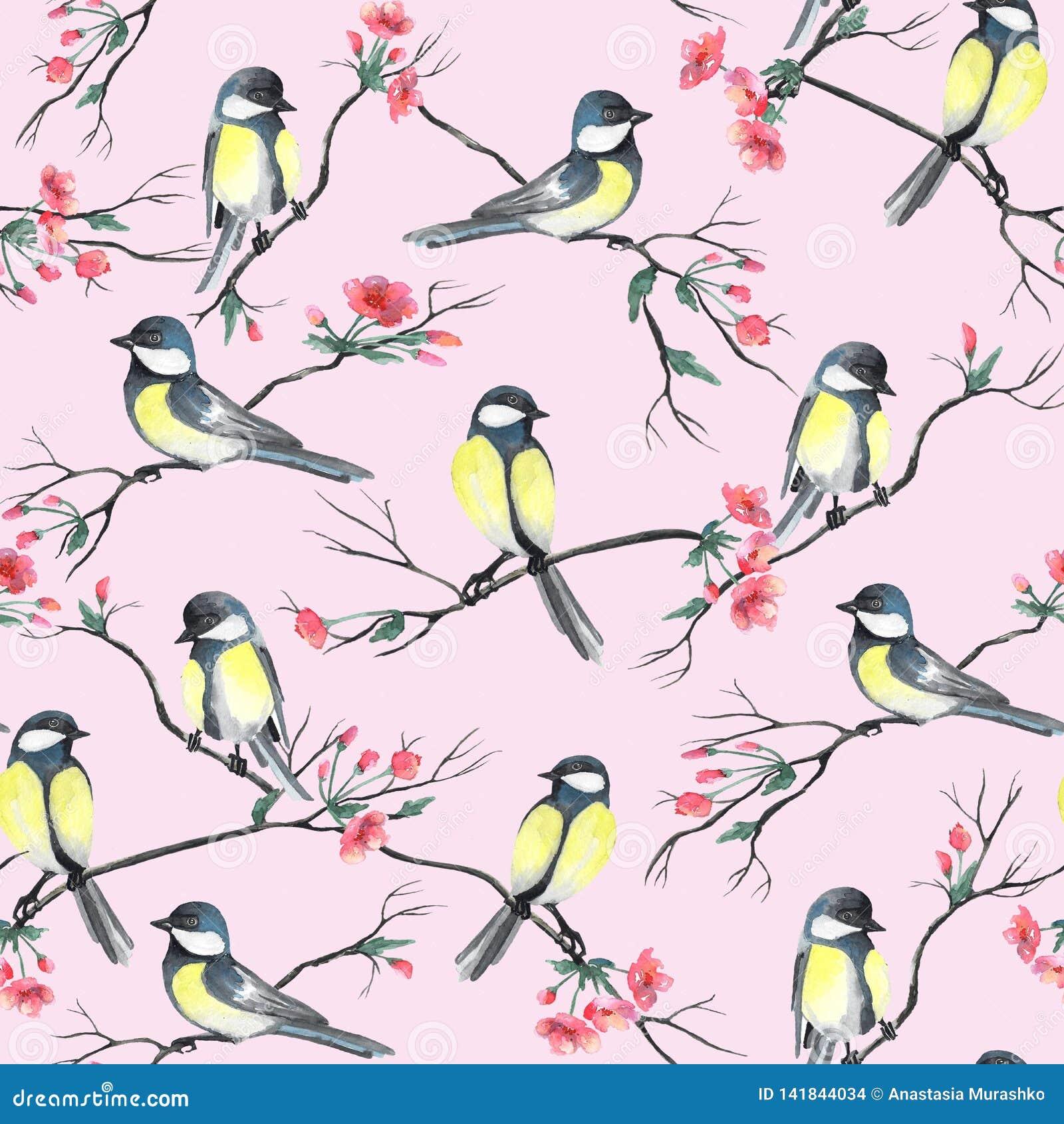 Bezszwowy wzór z akwarela ptakami siedzi gałąź z kwiatami na