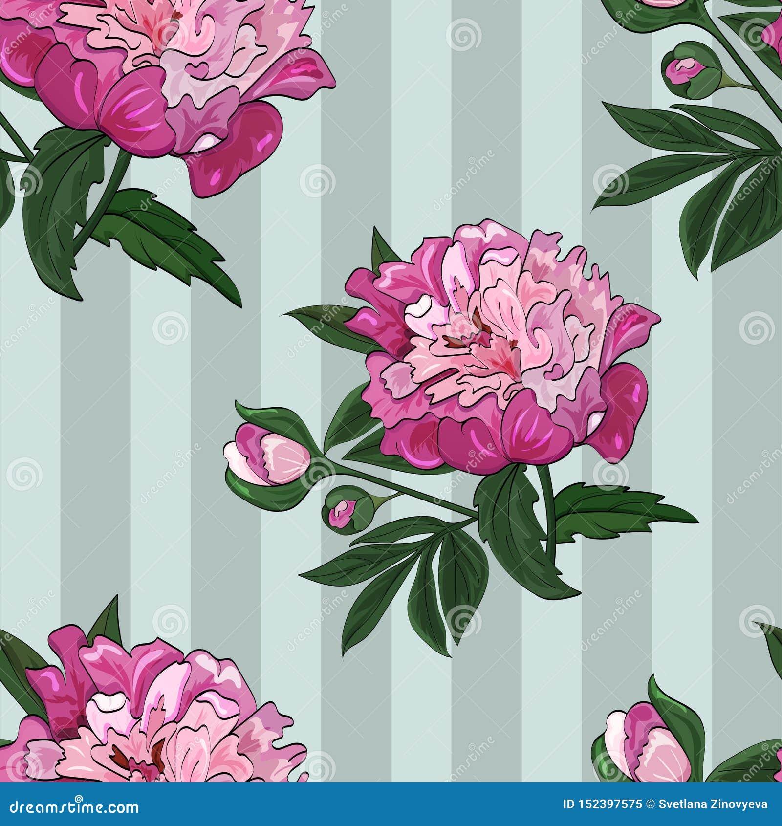 Bezszwowy wzór kwiaty i pączki różowa peonia na zielonym pionowo pasiastym tle wektor