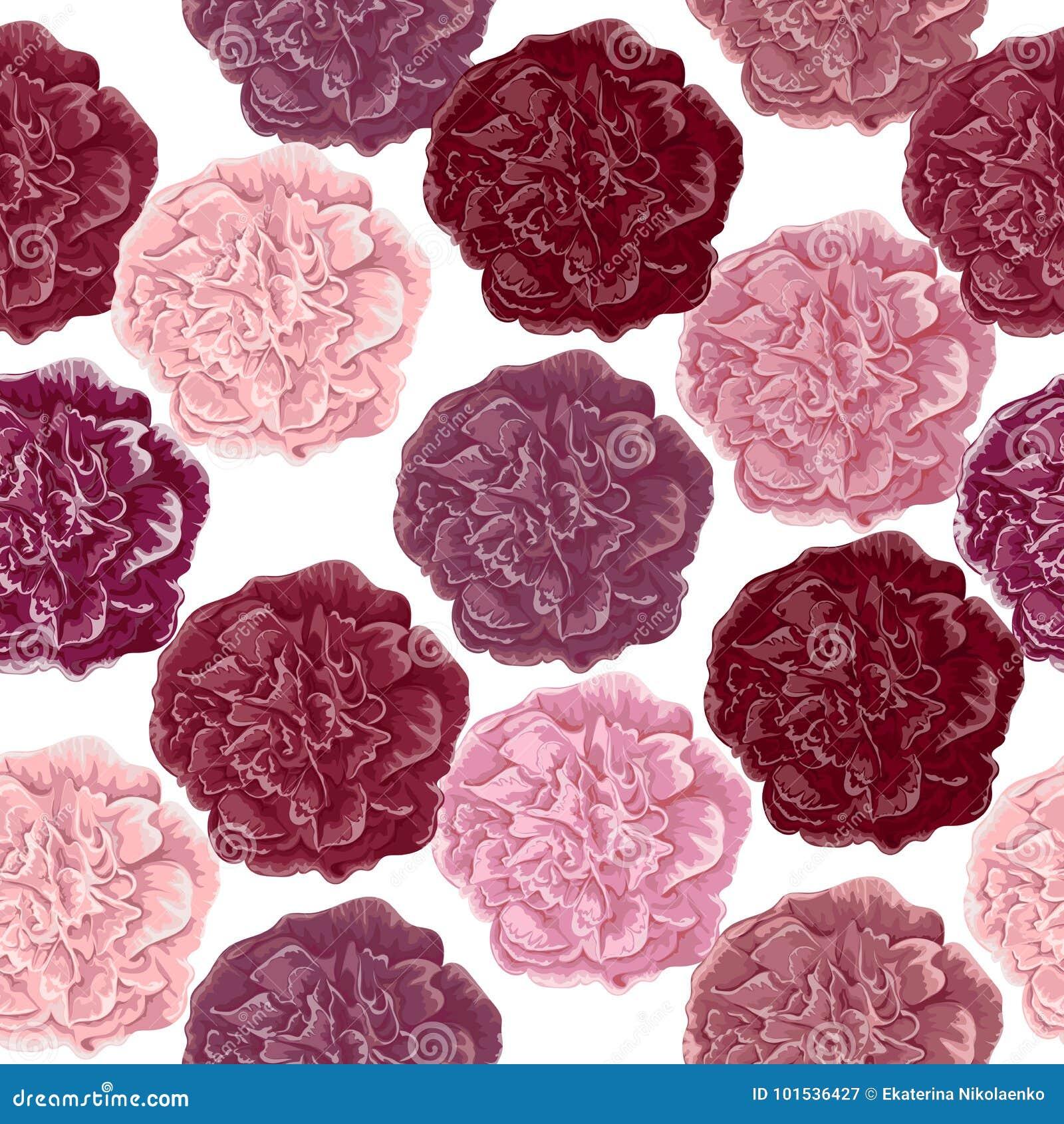 Bezszwowy wzór z goździków kwiatami Różnica różni kolory