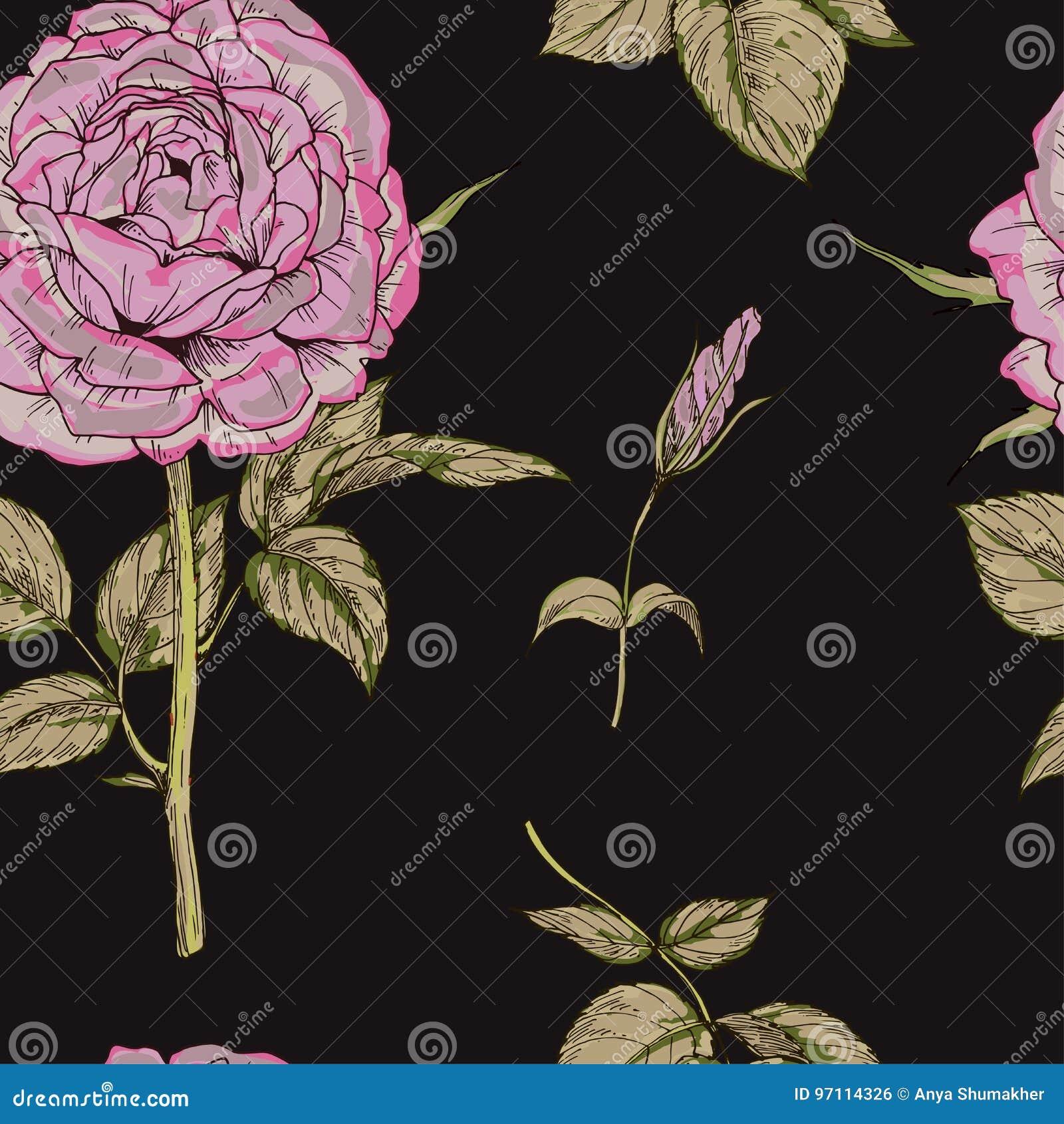 Bezszwowy wzór z menchii róży kwiatem odizolowywającym na czarnym tle delikatnie również zwrócić corel ilustracji wektora