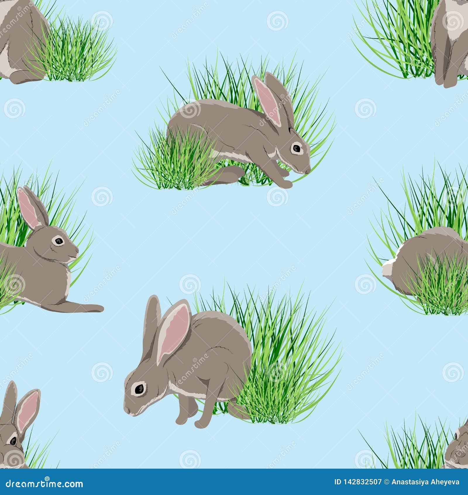 Bezszwowy wzoru Realistyczne zając w zielonej trawie Wiosna w Europa i Ameryka