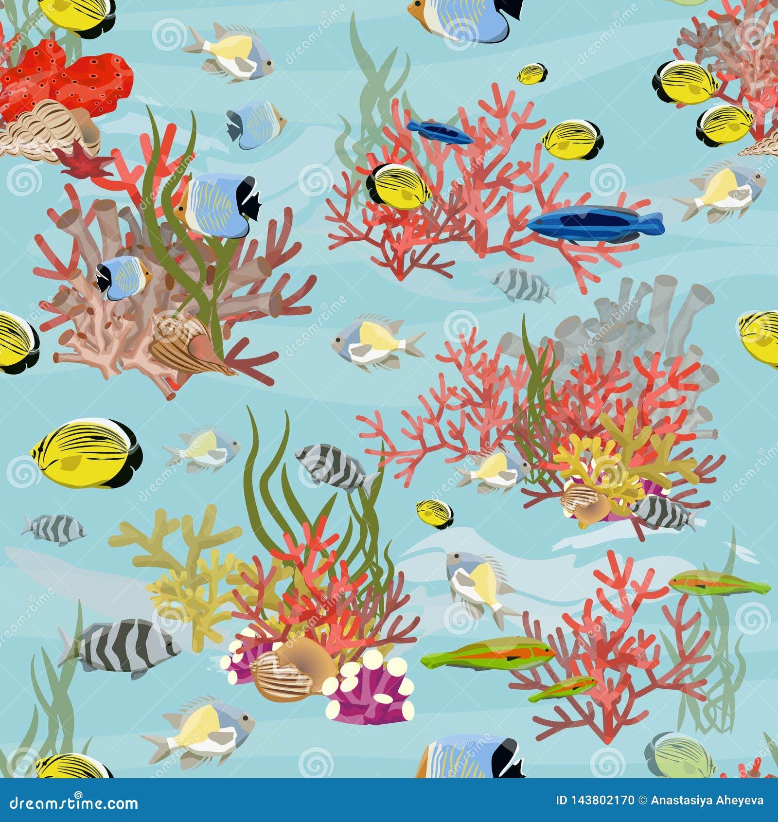 Bezszwowy wzoru Tropikalna ryba, korale, algi i rozgwiazda,