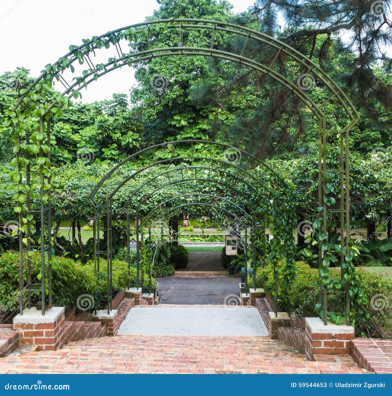 Bågar med växter arkivfoto   bild: 59544653