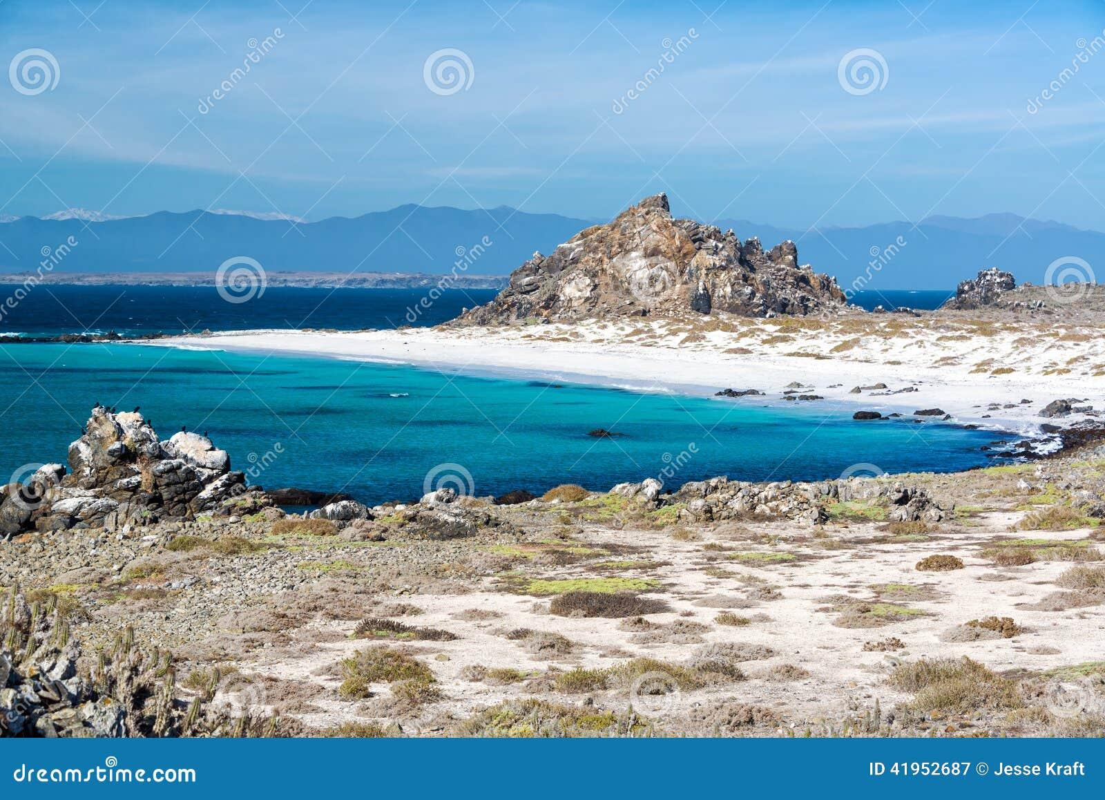 Biała piasek błękitne wody i plaża