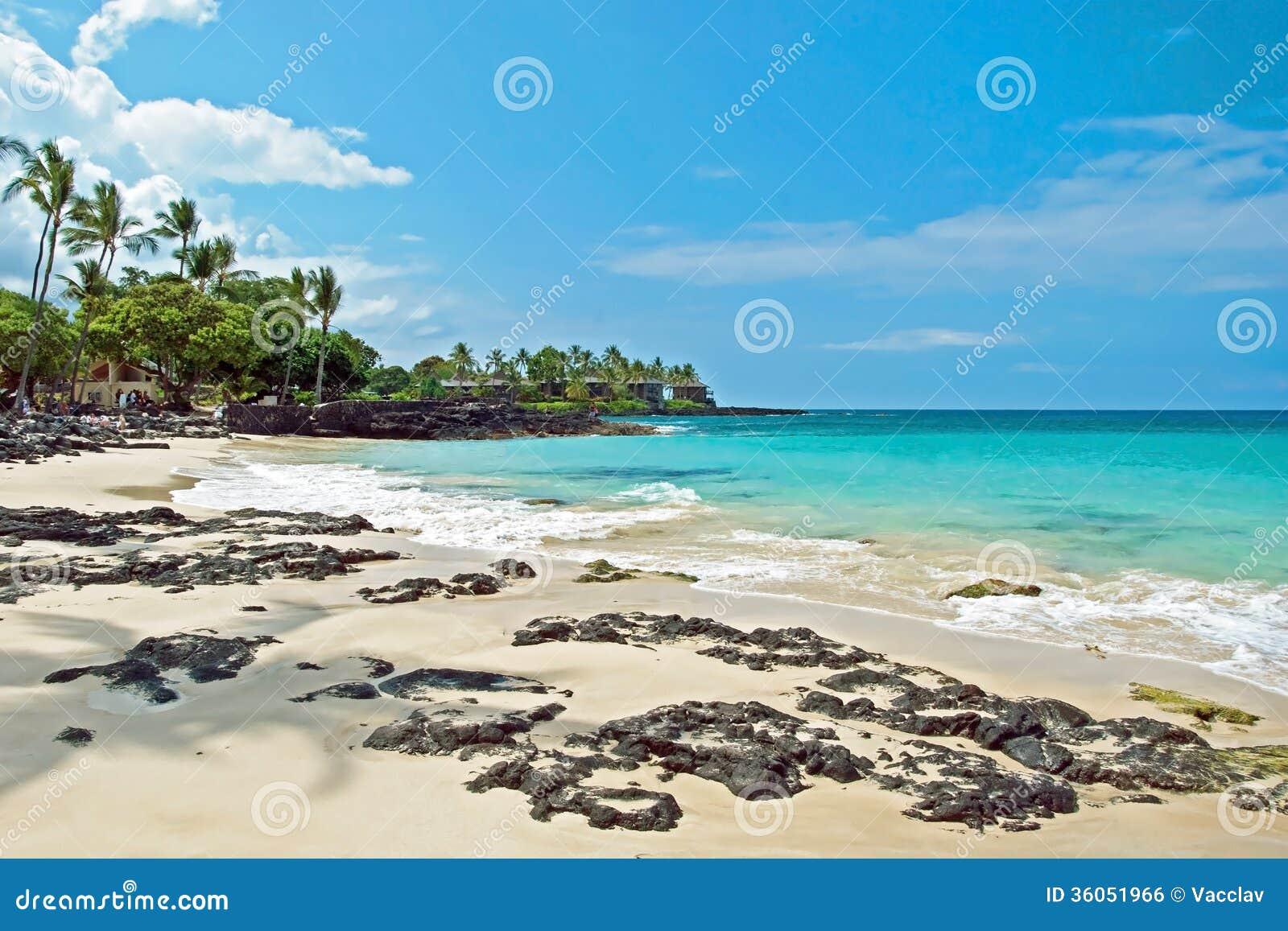 Biała piasek plaża na Hawaje Dużej wyspie z lazurowym oceanem w backgr
