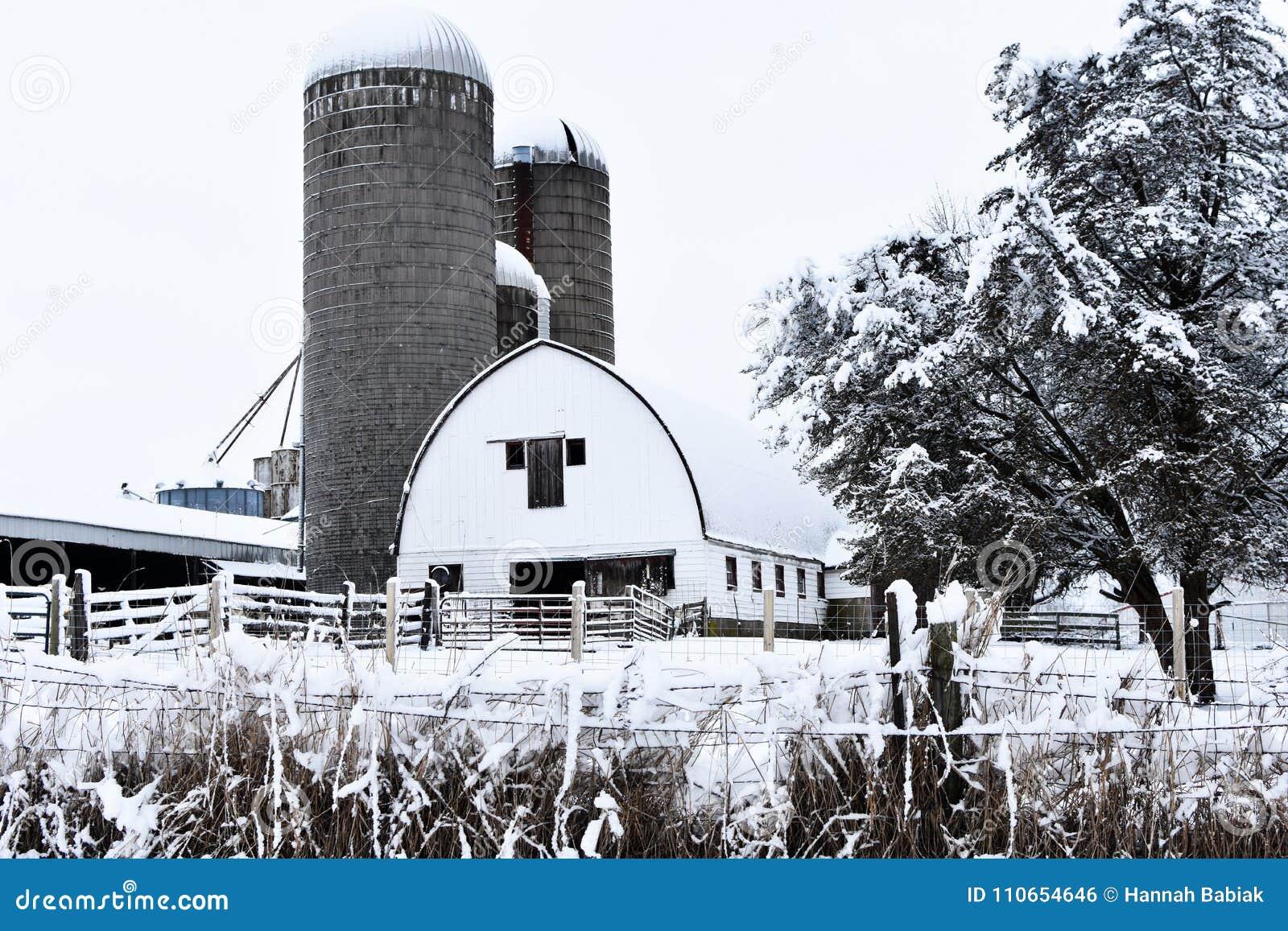 Biała stajnia w zimie z silosami