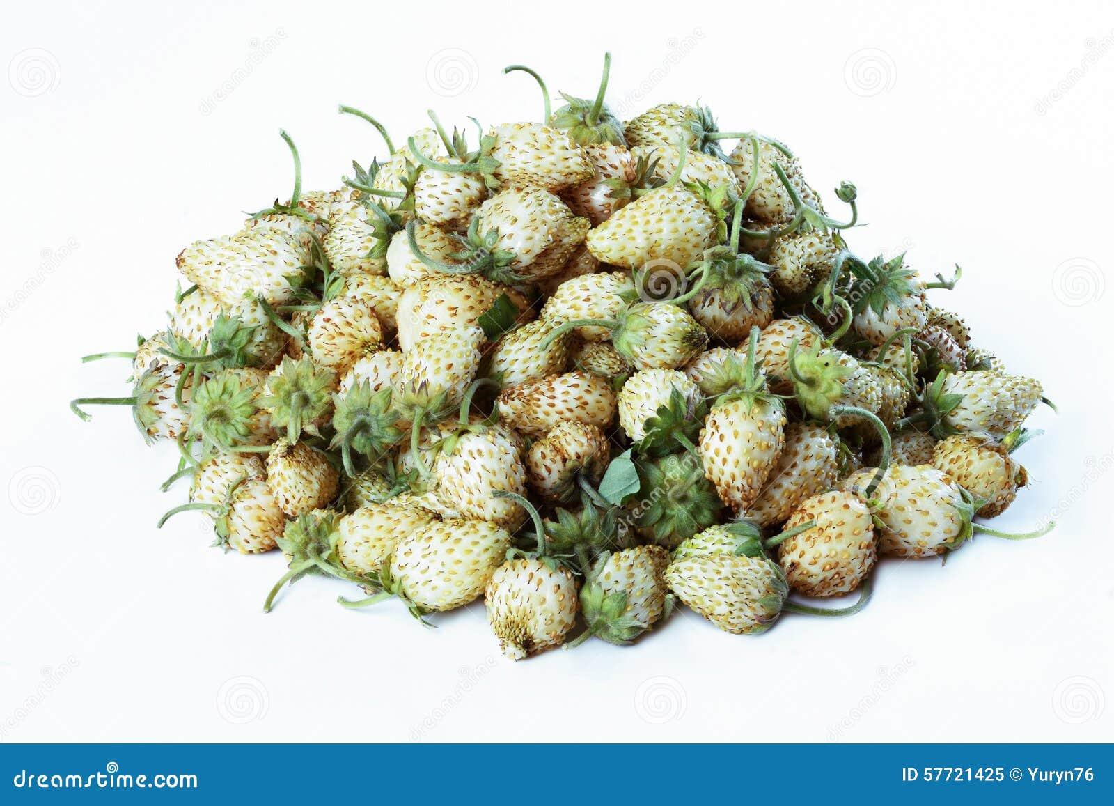 Białe ogrodowe truskawki
