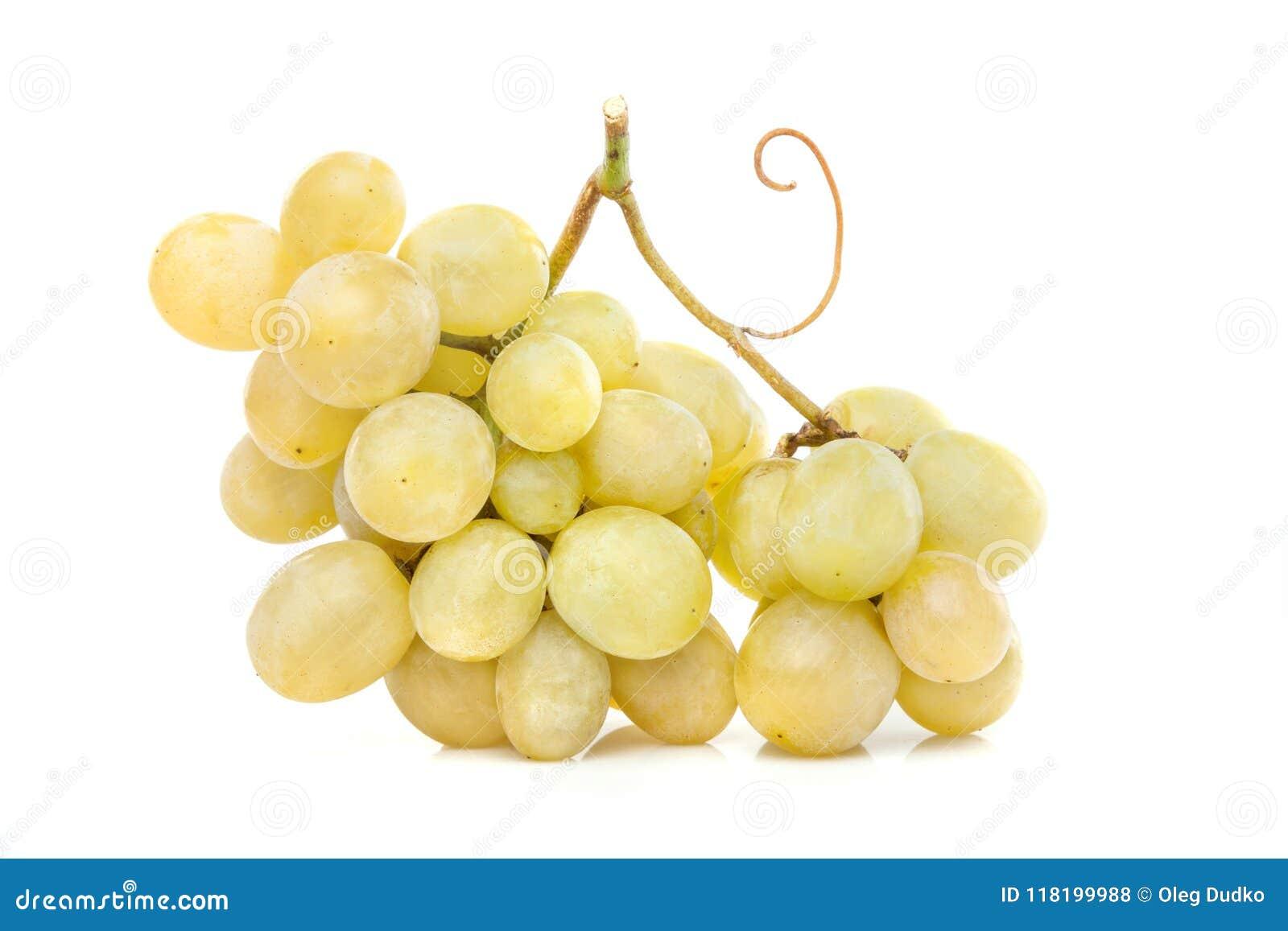 Białego winogrona grono