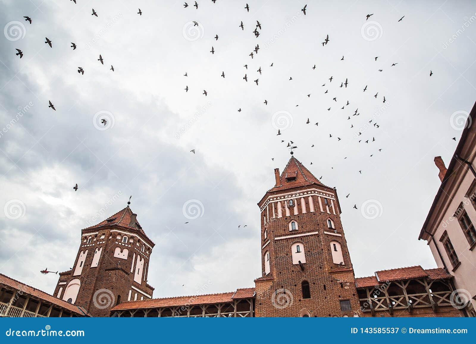 Białoruś, ptaki nad Mir Roszuje na chmurnym dniu