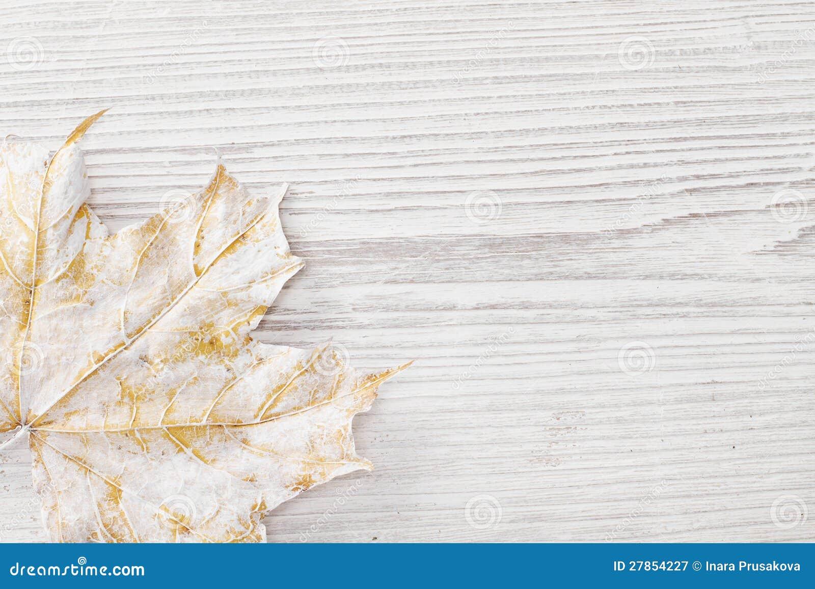 Biały liść klonowy, drewniany tło