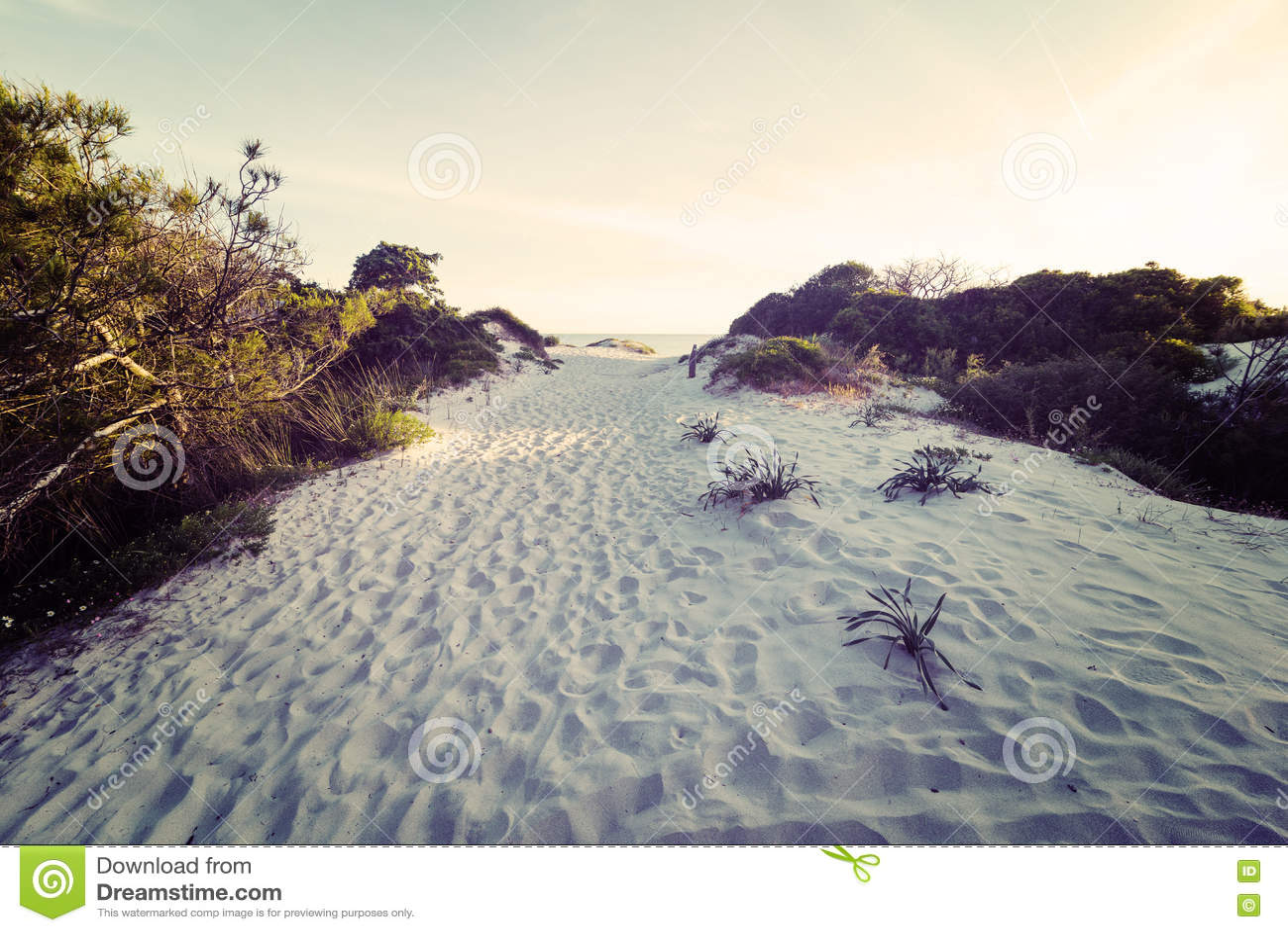 Biały piasek przy zmierzchem