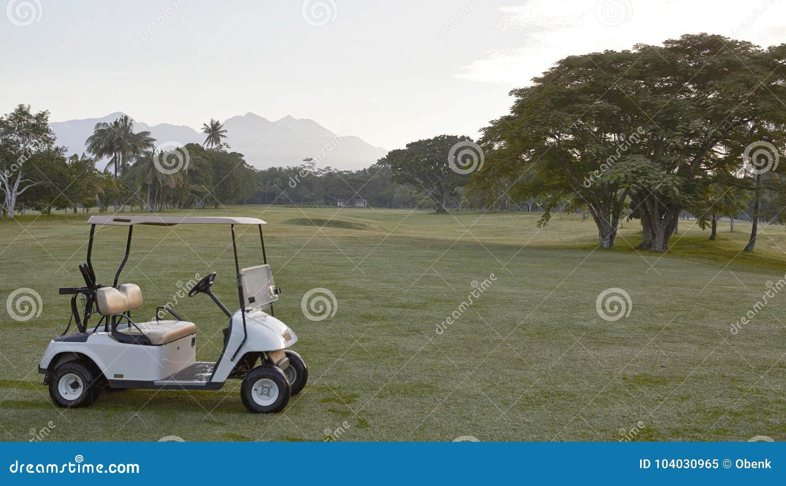 Biały powozik na polu golfowym