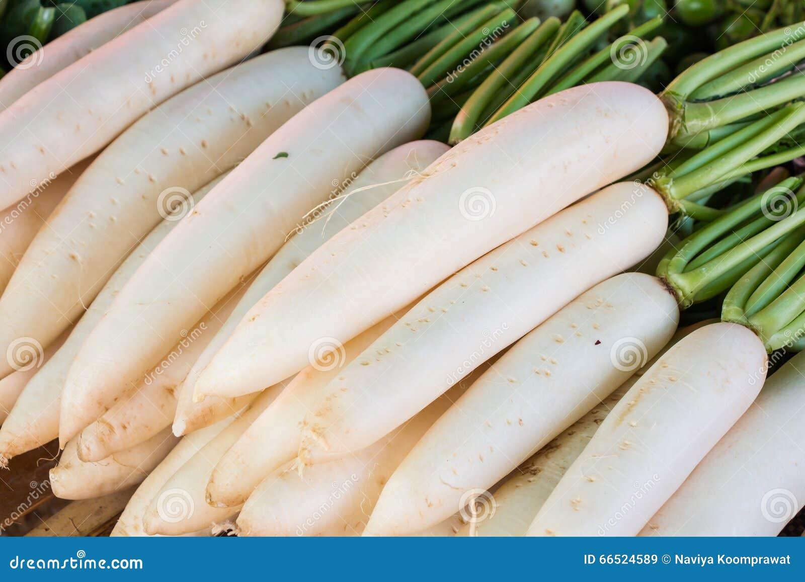 Biały rzodkiew