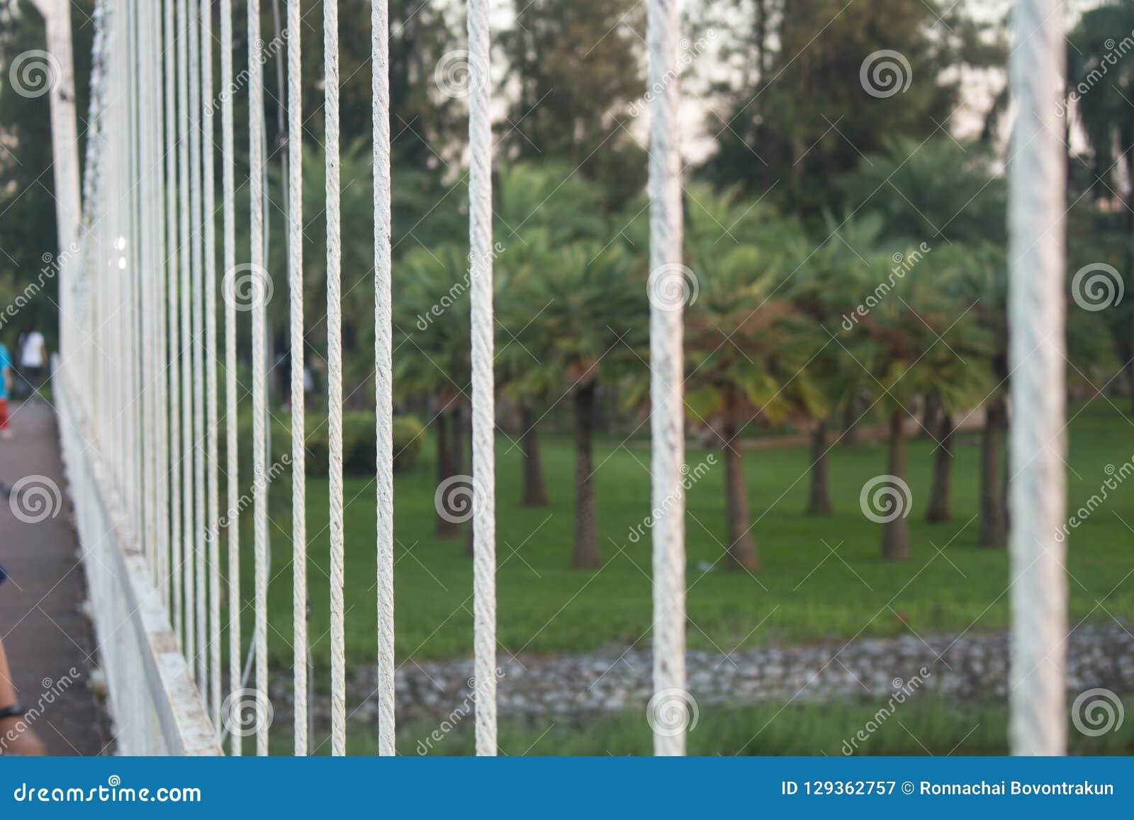 Biały stalowy kablowy most