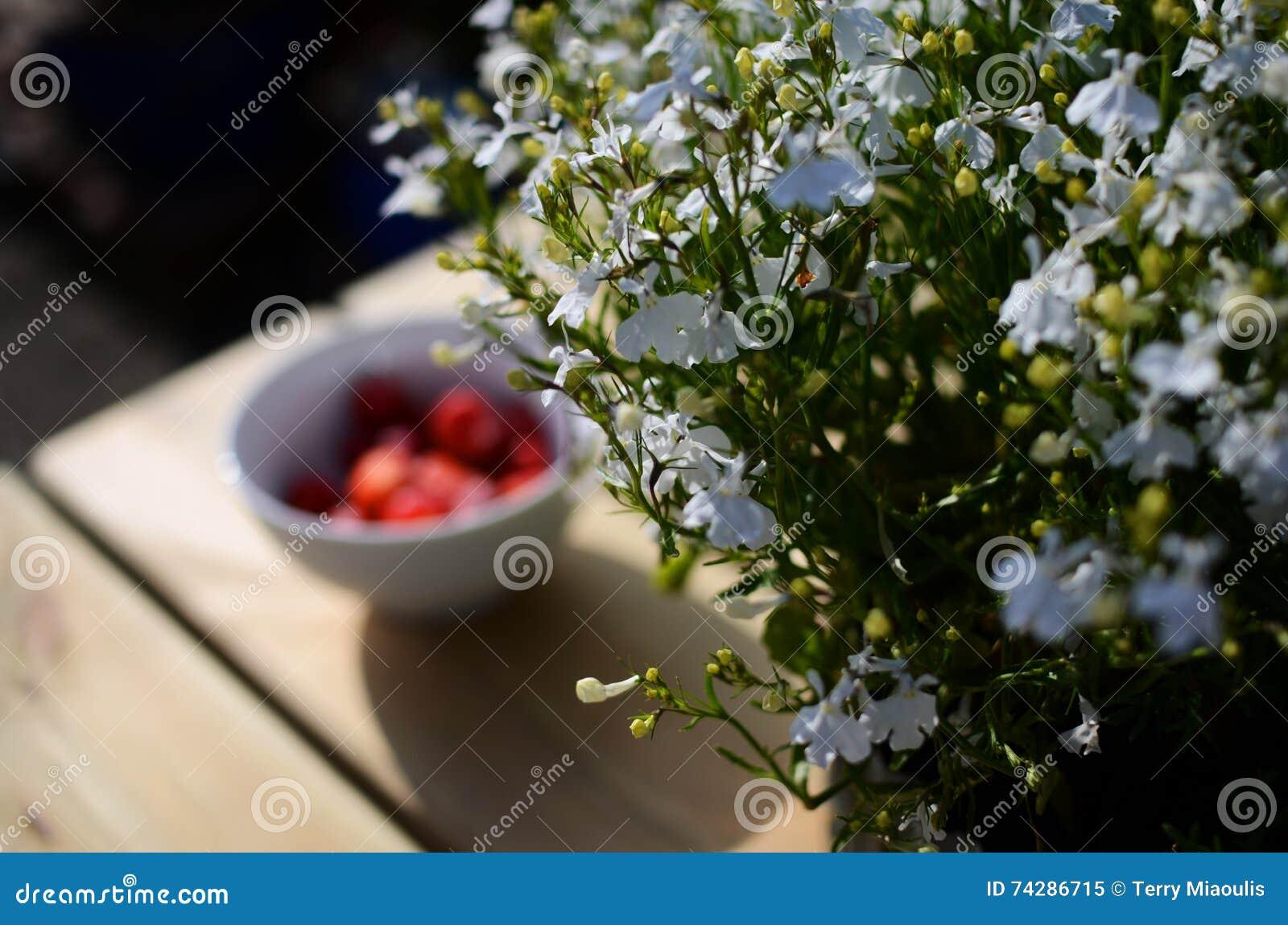 Biali kwiaty na kraju stole