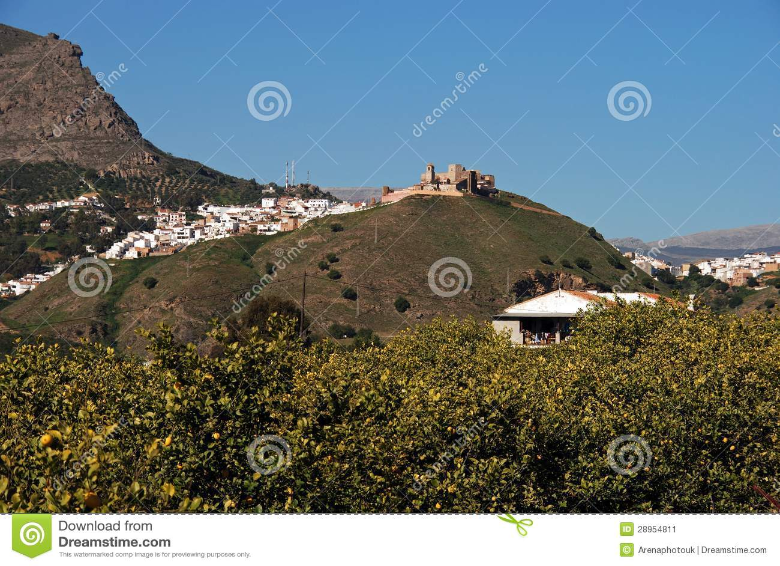 Biali miasteczka i cytryny drzewa, Alora, Hiszpania.