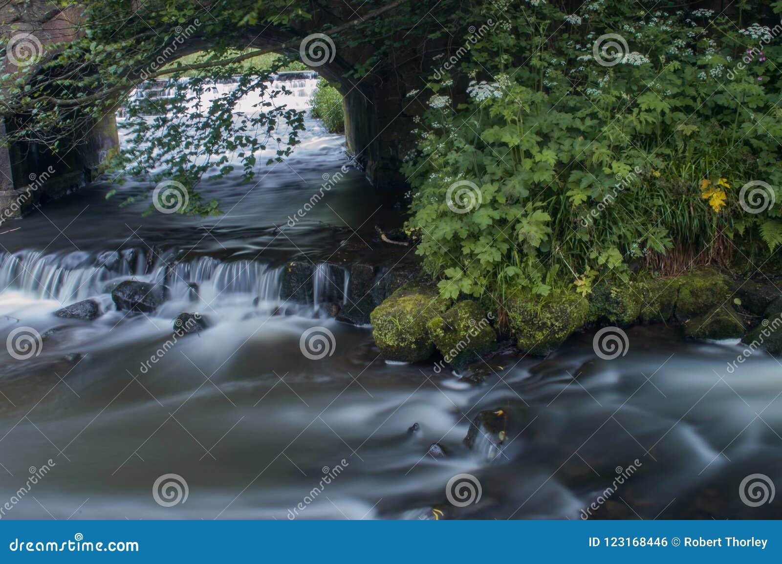 Bianco latteo girato dell acqua corrente tramite un esposizione lunga come scorre intorno alle rocce muscose verdi e marroni