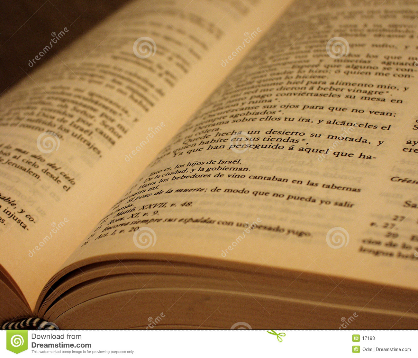 Bibbia antica spagnola