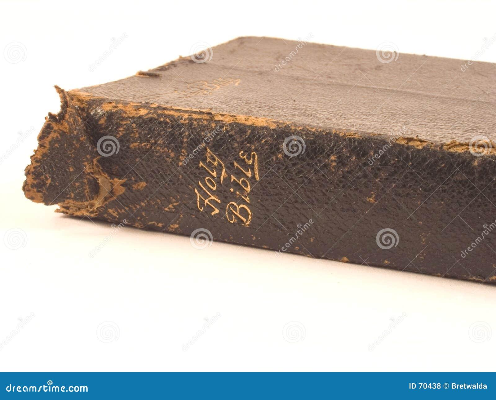 Bibbia su bianco 1