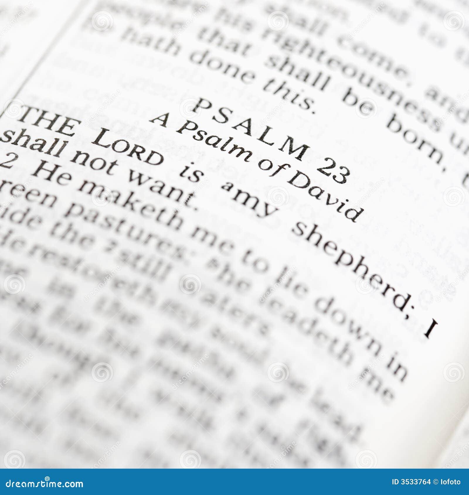 Bibelhelgedompsalm