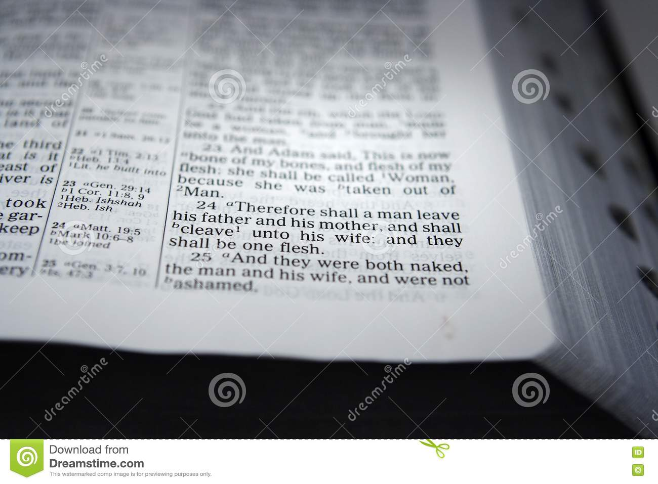 how to say bible chapters and verses