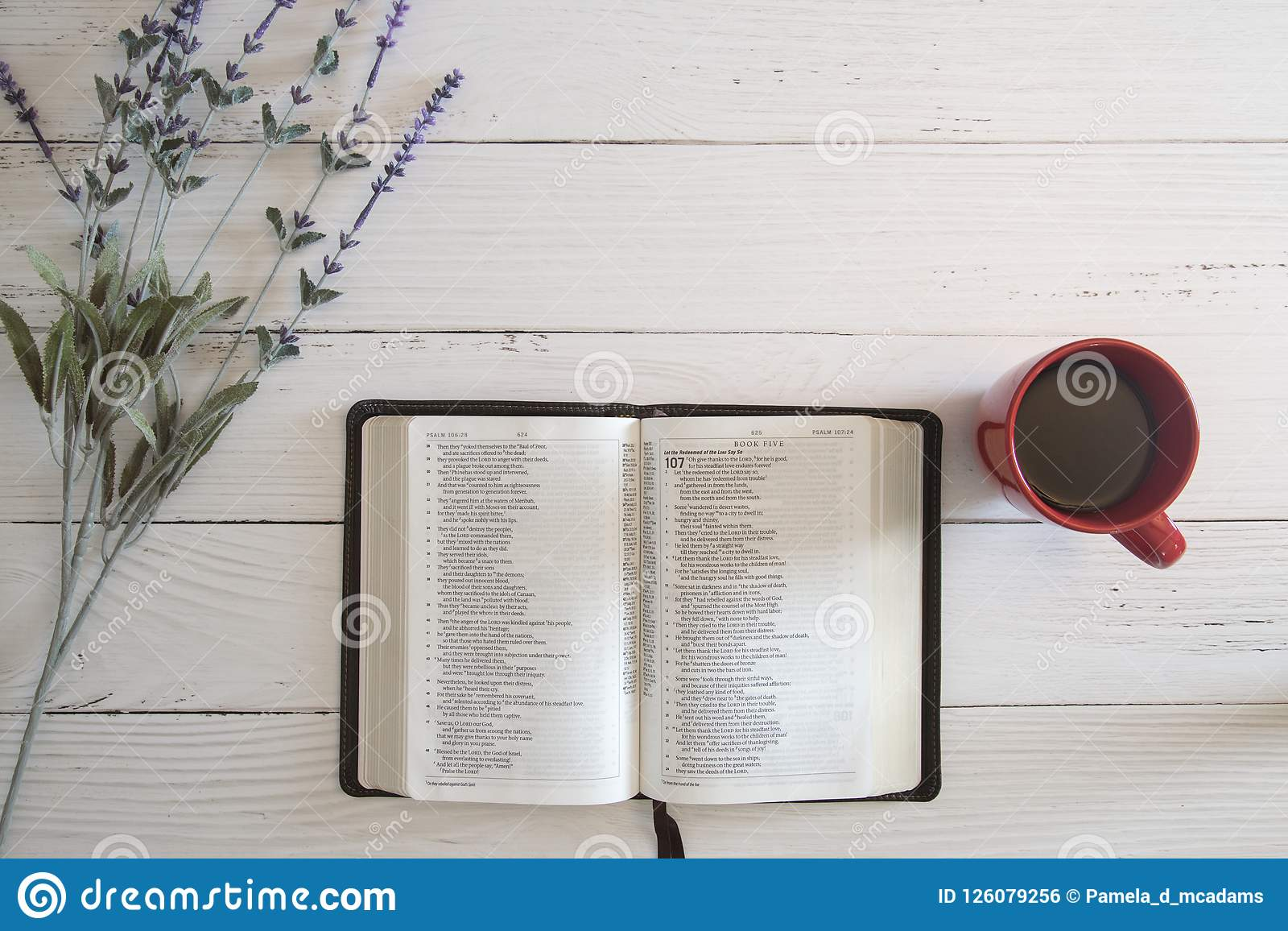 Bible Study Background Stock Photo Image Of Spring 126079256