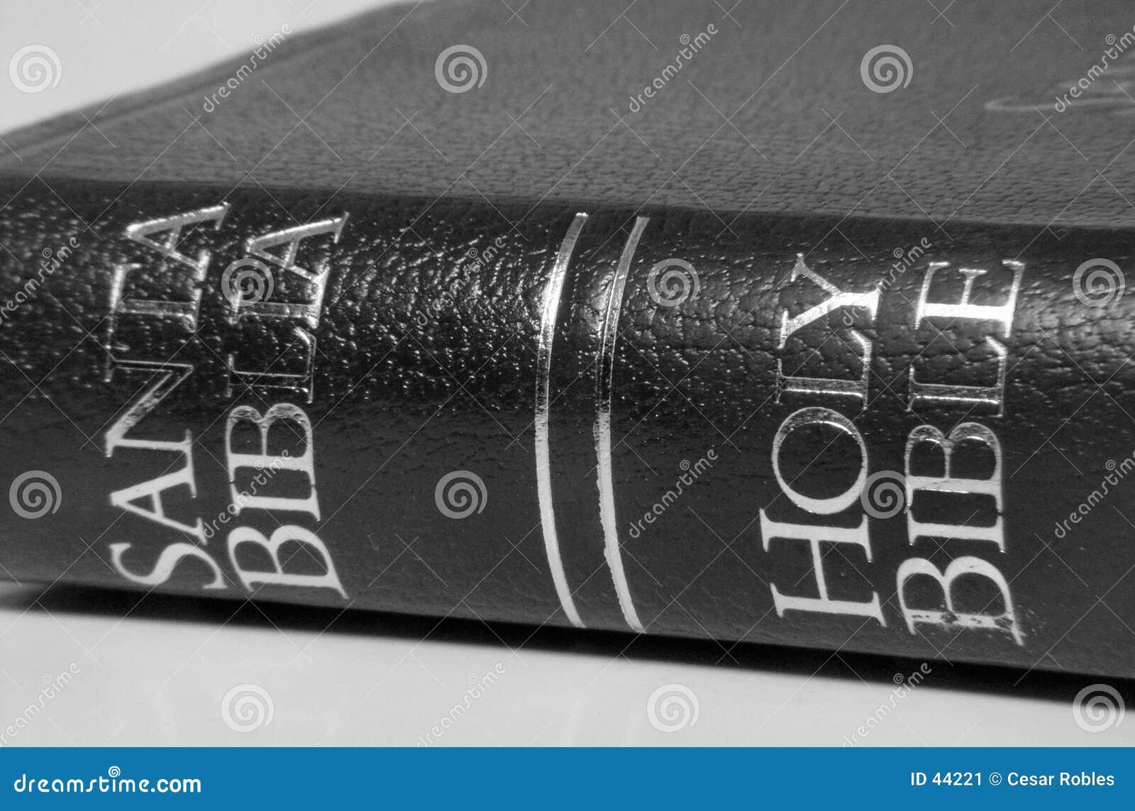Biblia dwujęzyczna