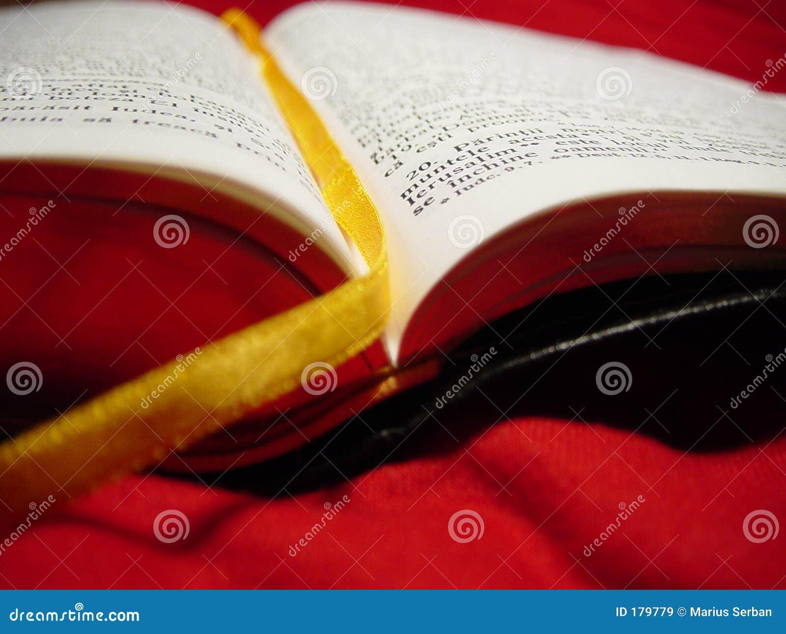 Biblia rumana