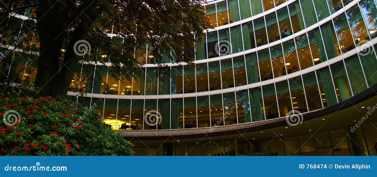 Bibliothèque d université
