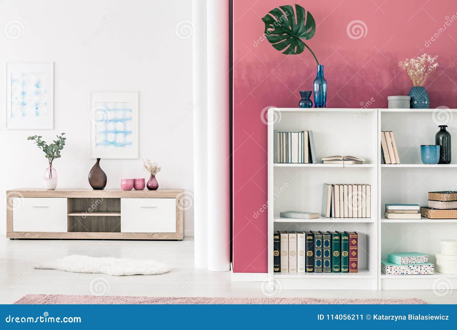 Bibliothèques dans le salon