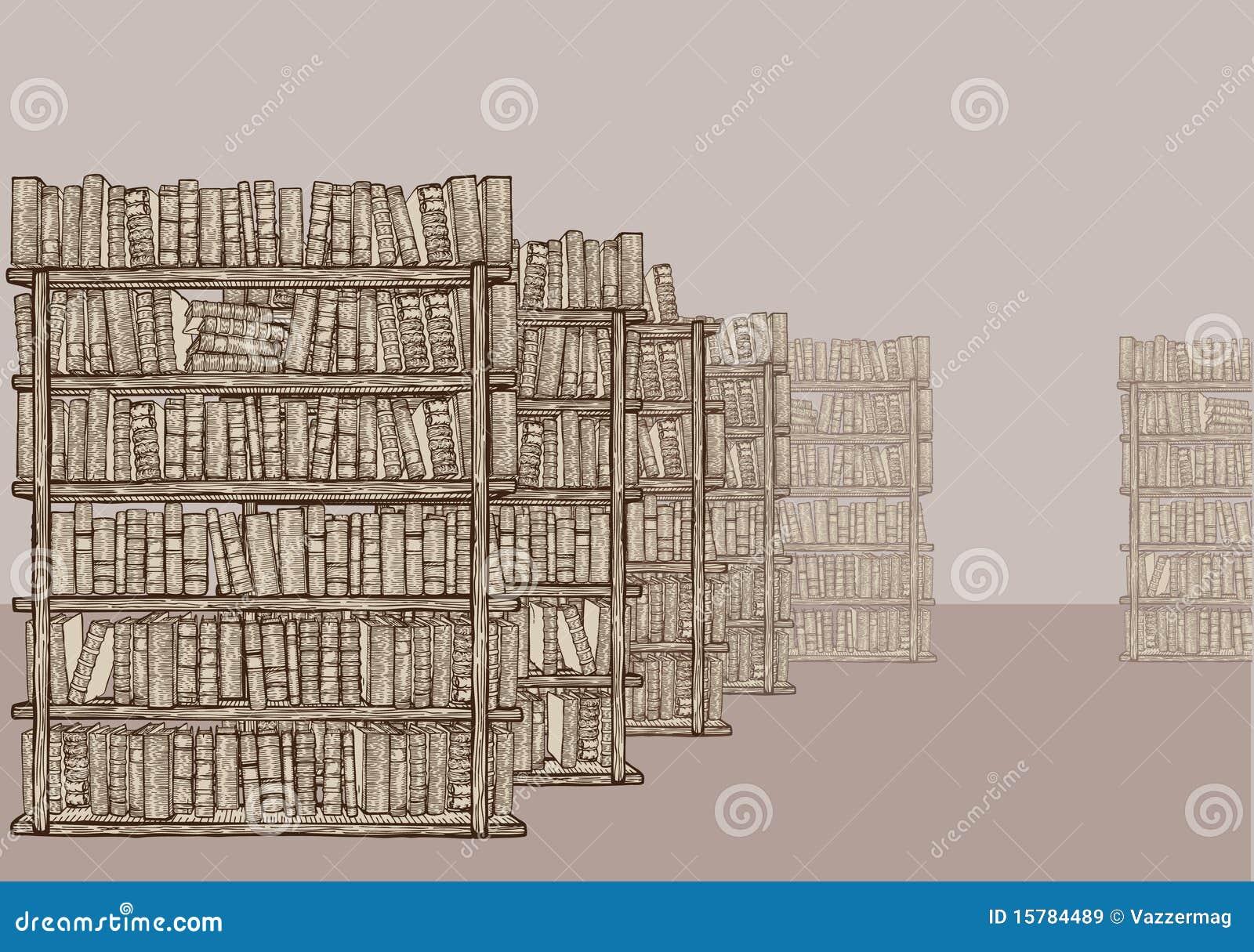 Bücherregal gezeichnet  Bibliothek Mit Bücherregalen Vektor Abbildung - Bild: 15784489