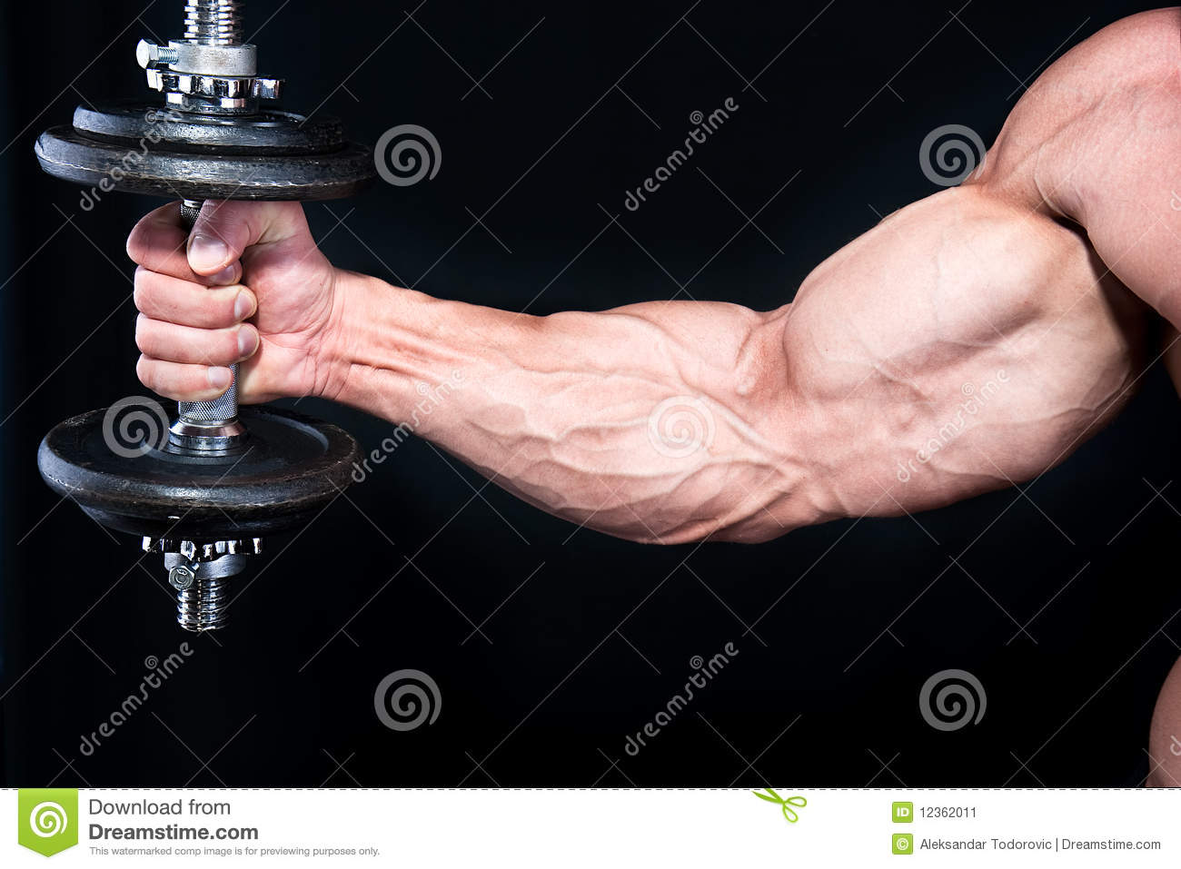 Bicep with hand weights