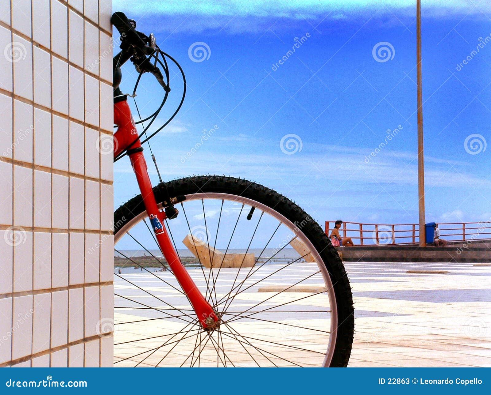 Bicicleta de Sun