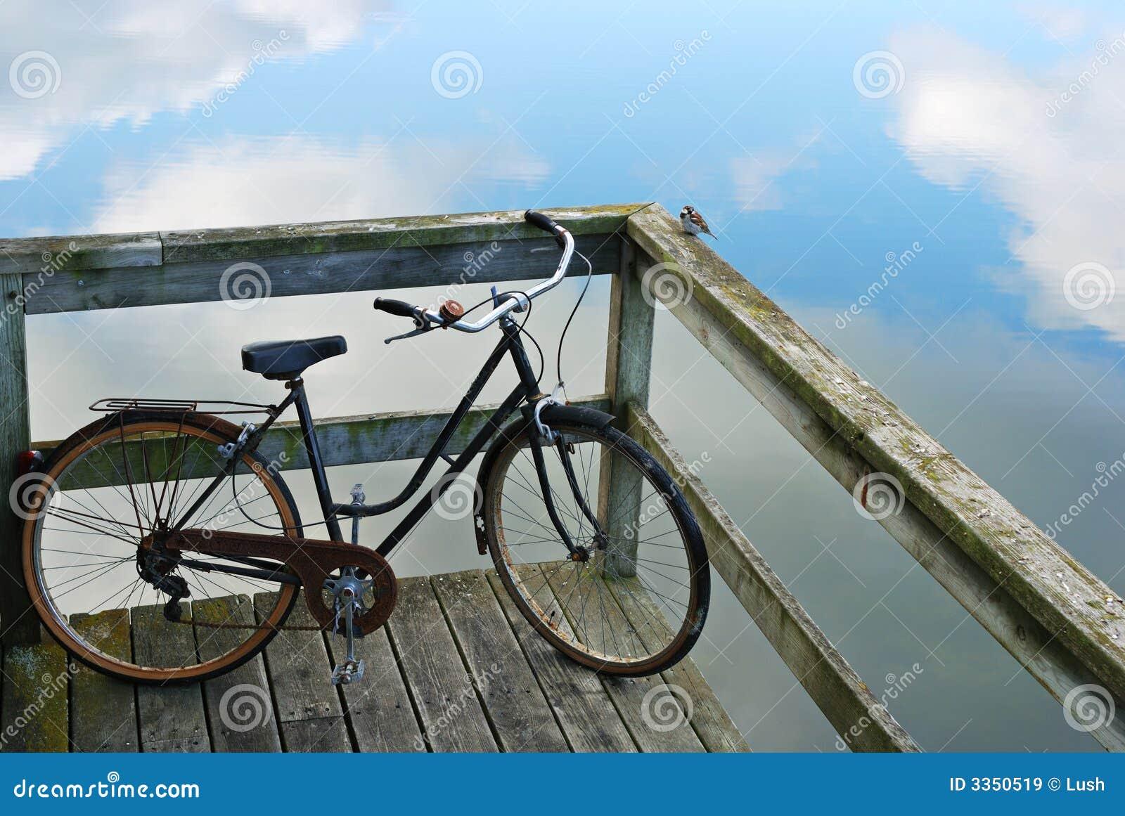 Bicicleta e pássaro