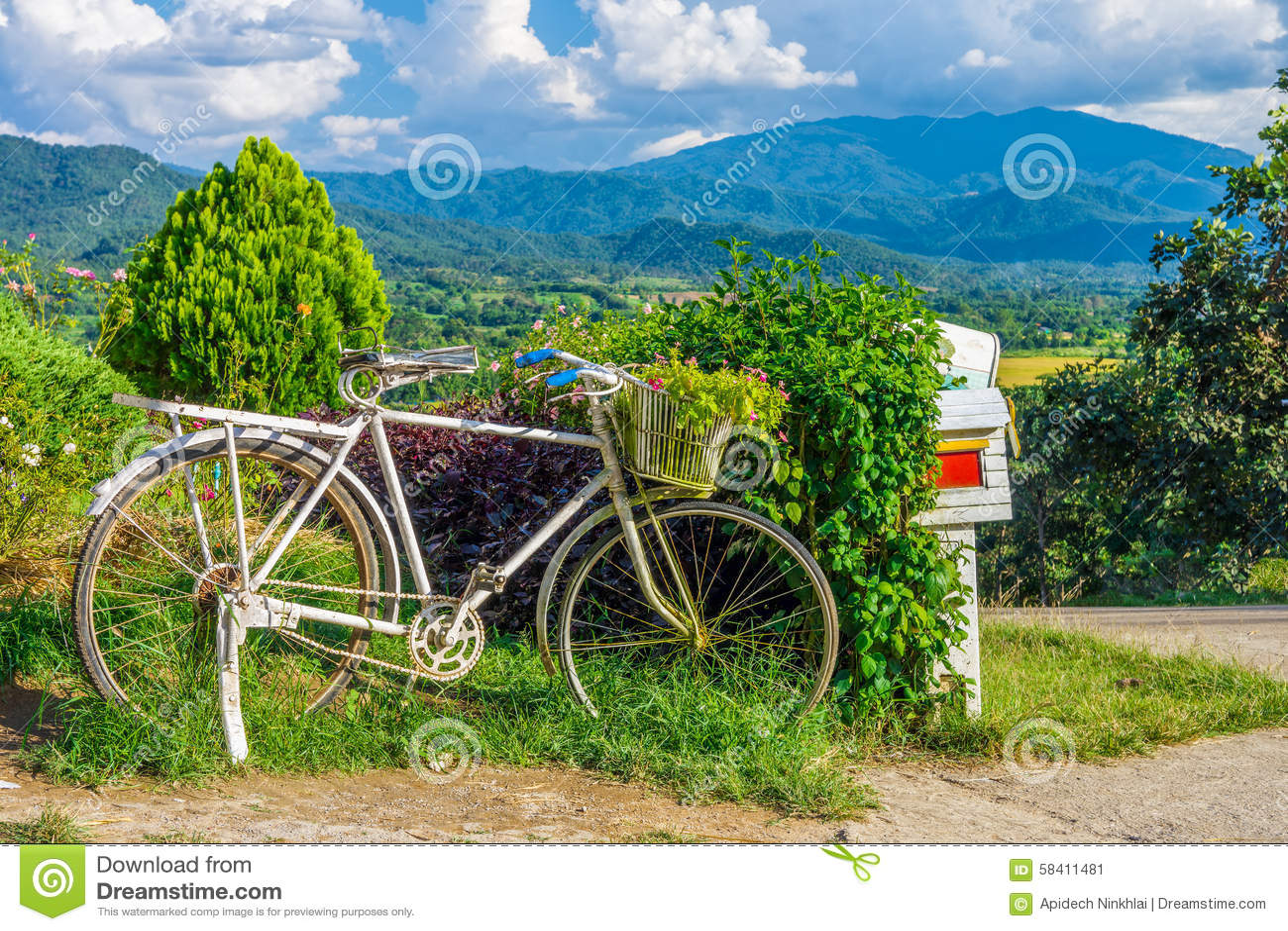 bicicleta y flores viejas en el jardn para la decoracin exterior