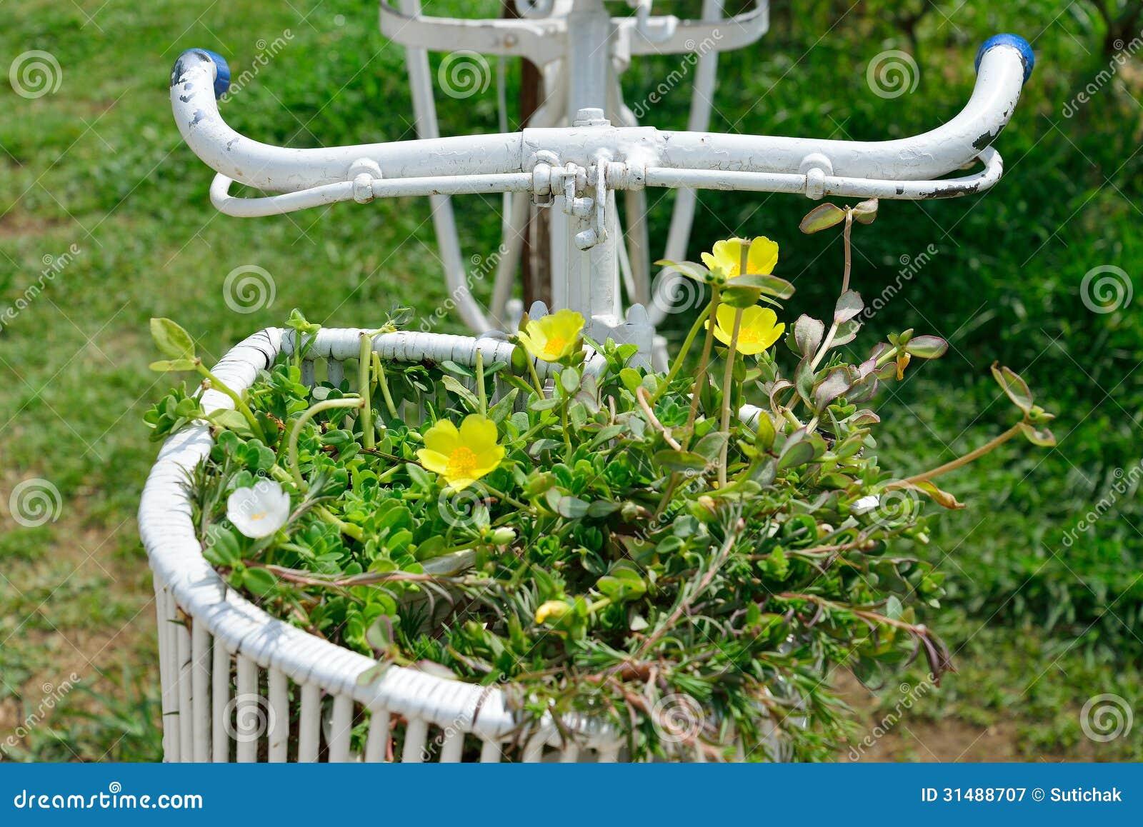 Bicicletta con la decorazione dei fiori fotografia stock for Fiori con la p