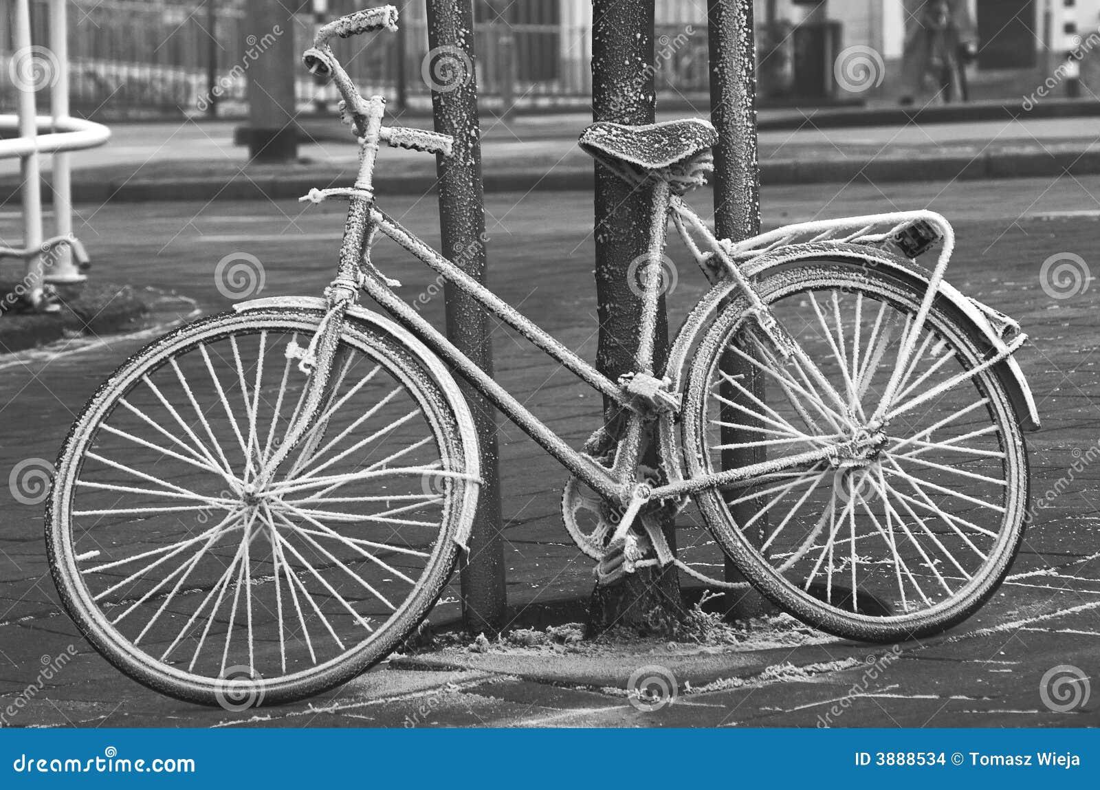 Bicicletta congelata