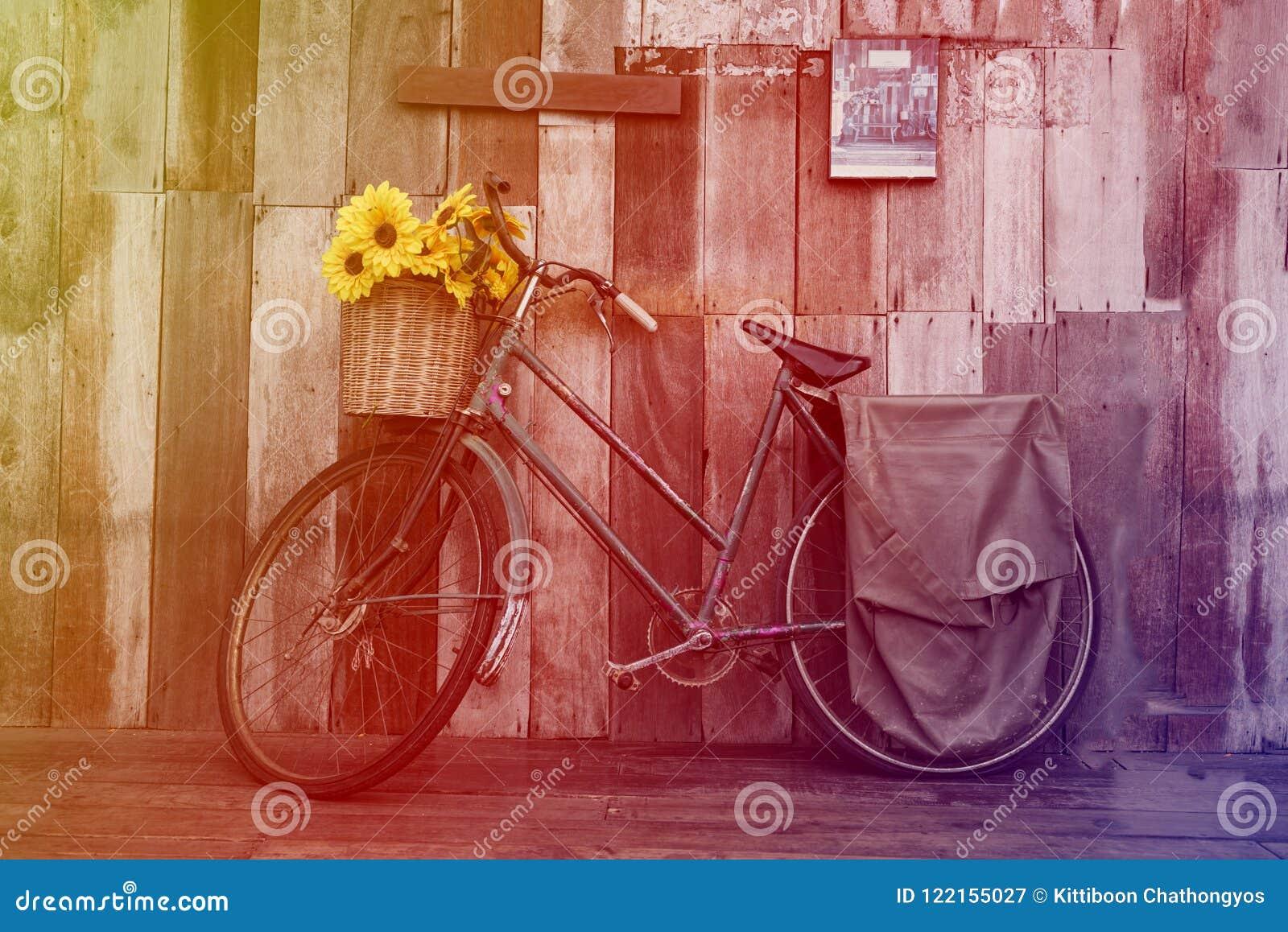 Bicicletta d annata con i girasoli nel canestro sul fondo di legno rustico della parete