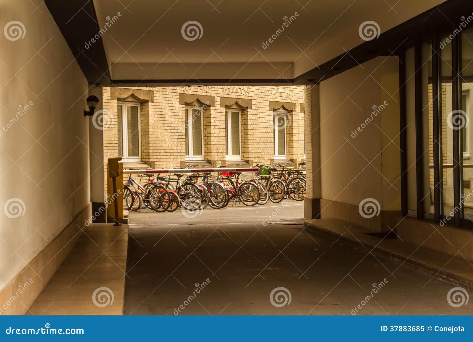 Biciclette in un cortile