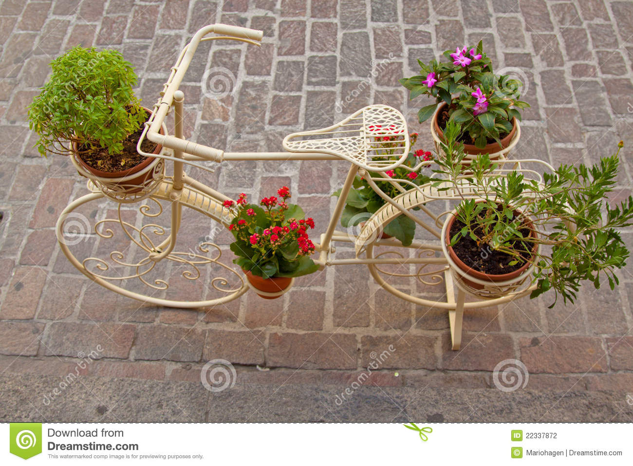 Bicycle As A Flower Stand Stock Photography Image 22337872