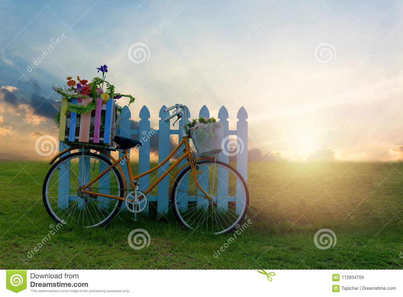 Bicycle with Flower Crate